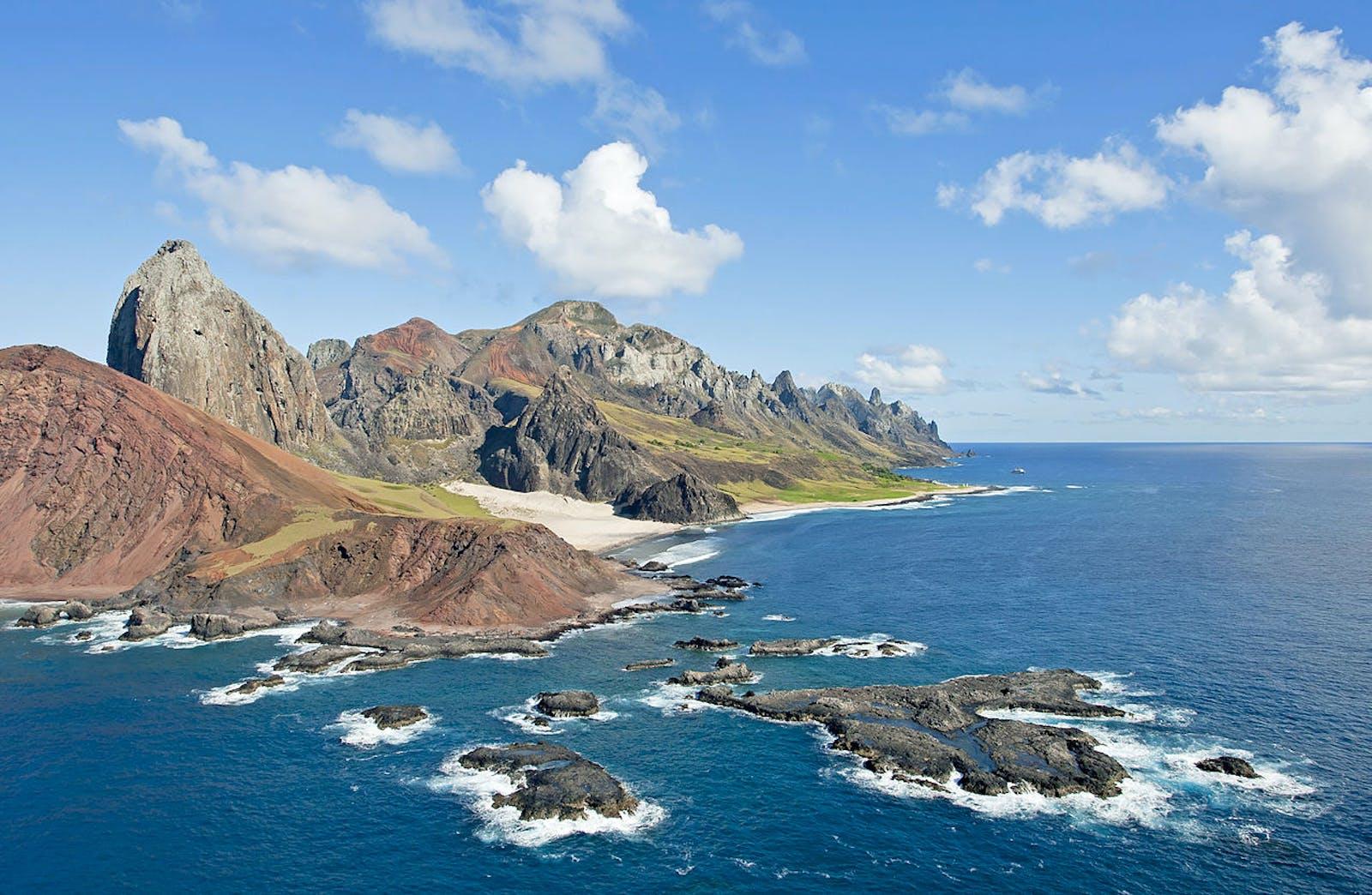 Trindade-Martin Vaz Islands Tropical Forests