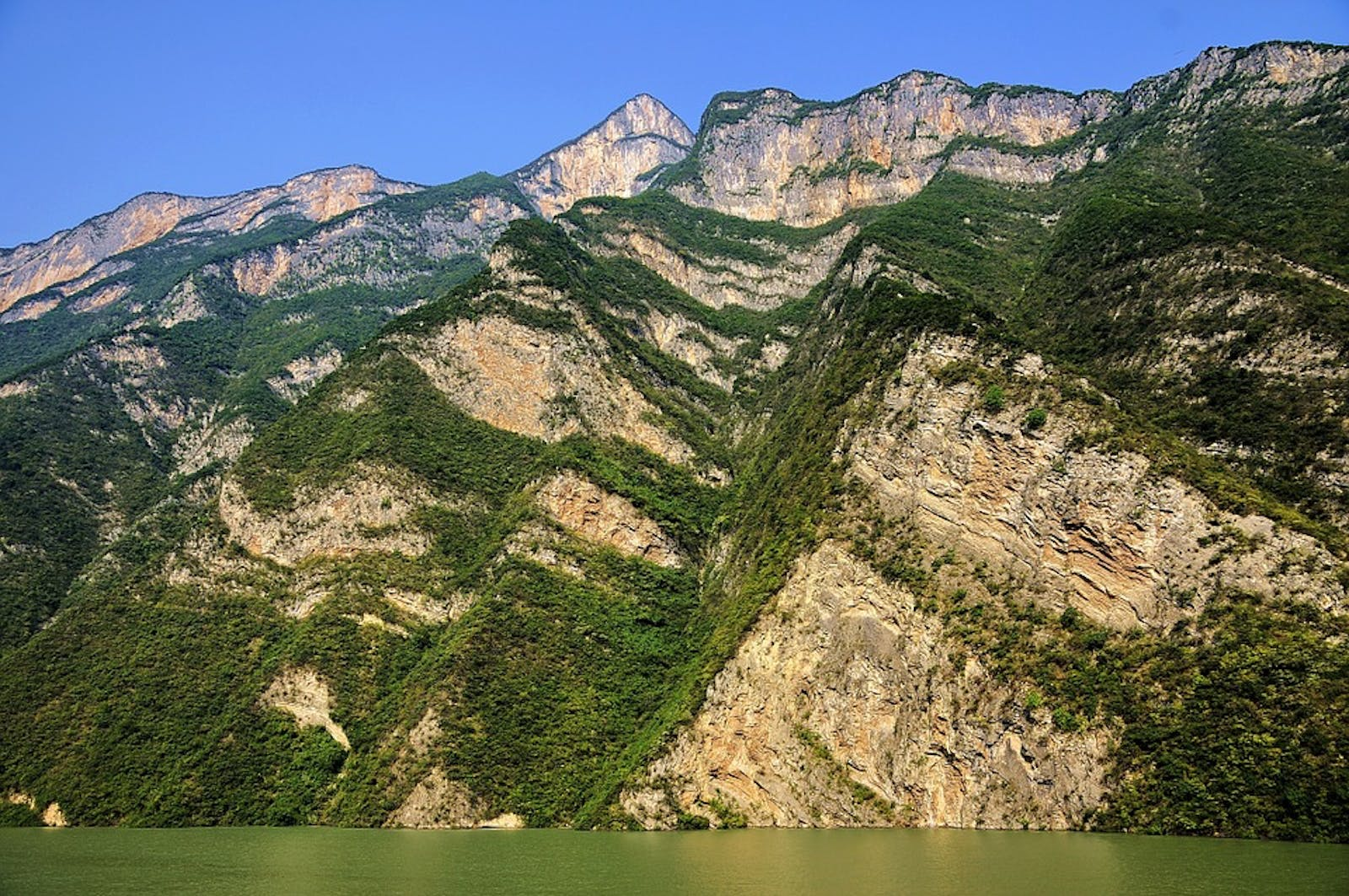 Daba Mountains Evergreen Forests