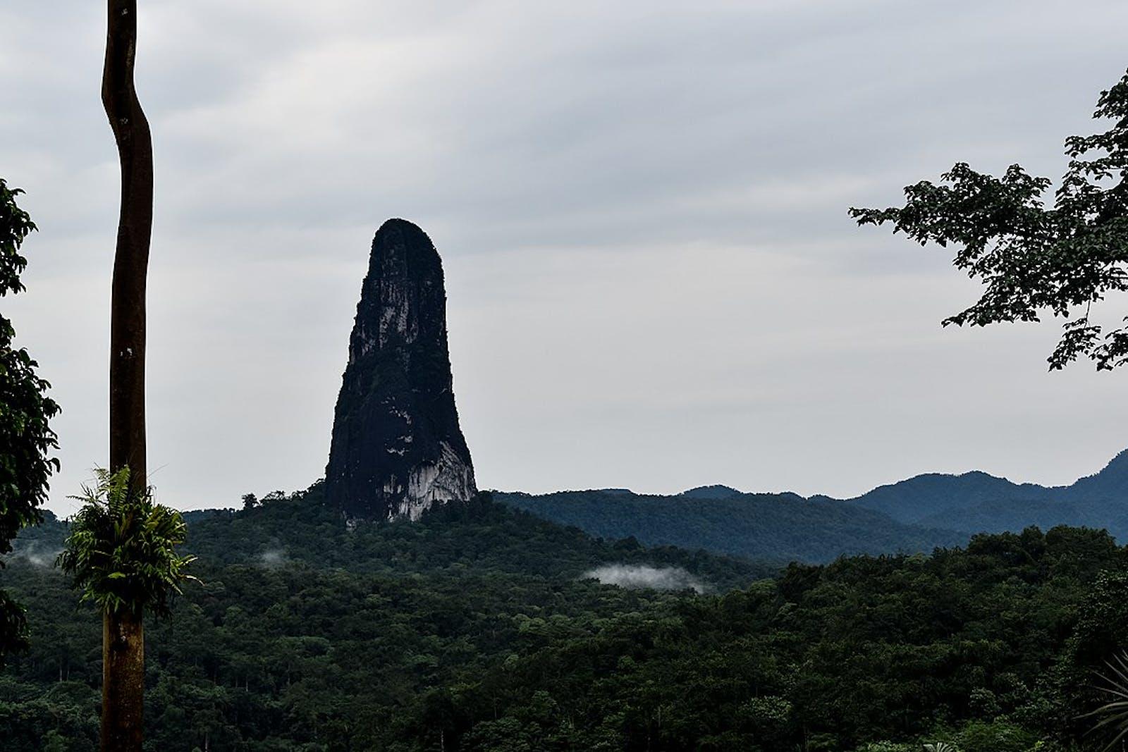 São Tomé, Príncipe, and Annobón Forests