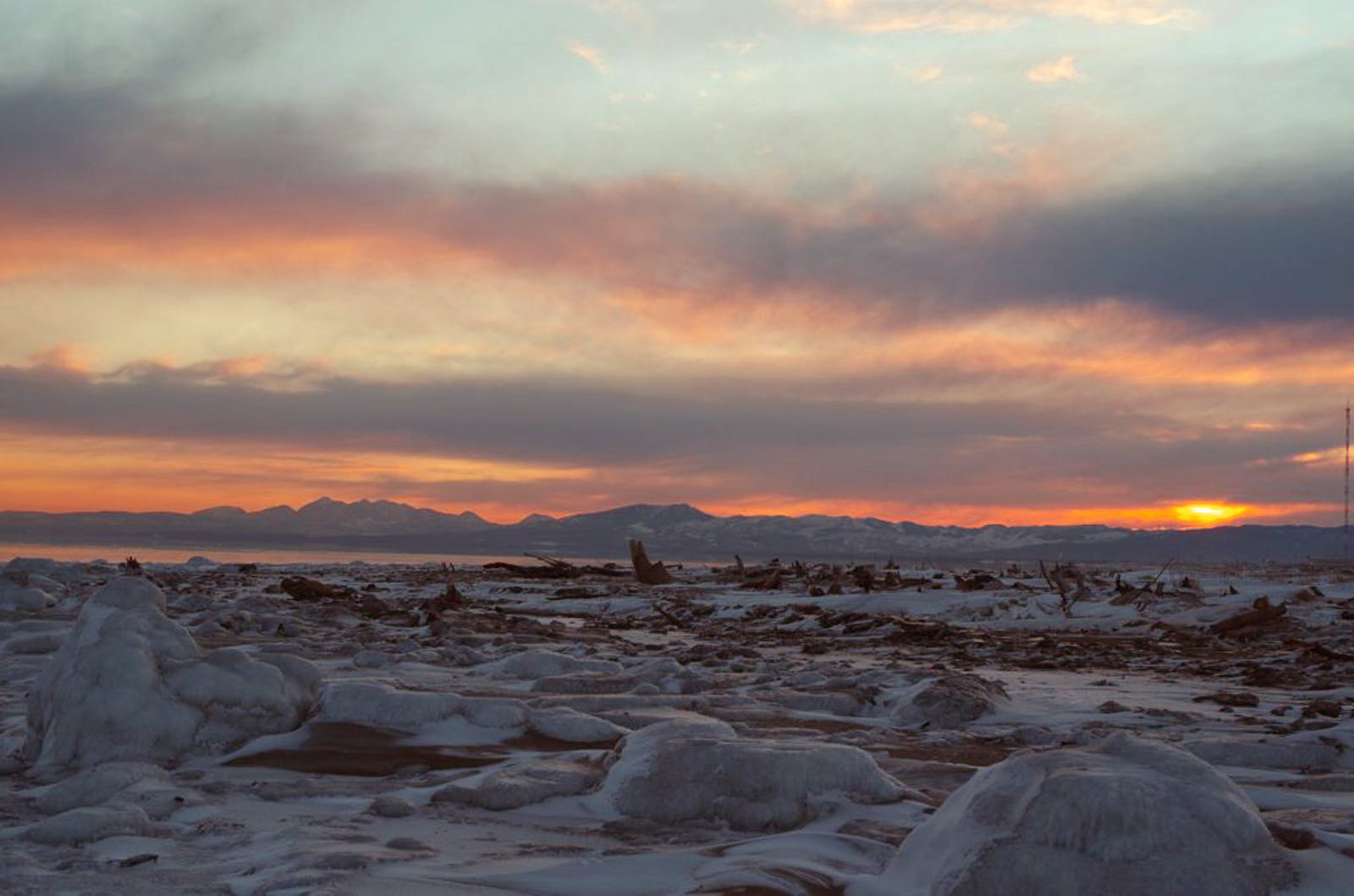 Sakhalin Island Taiga