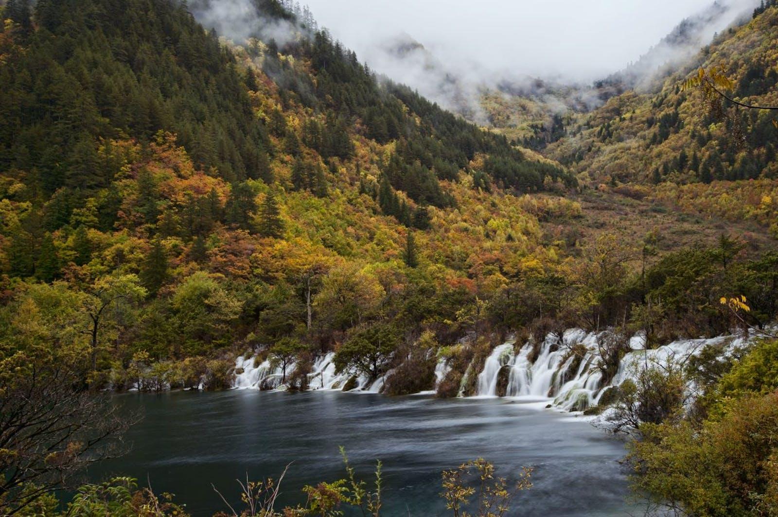 Qionglai-Minshan Conifer Forests