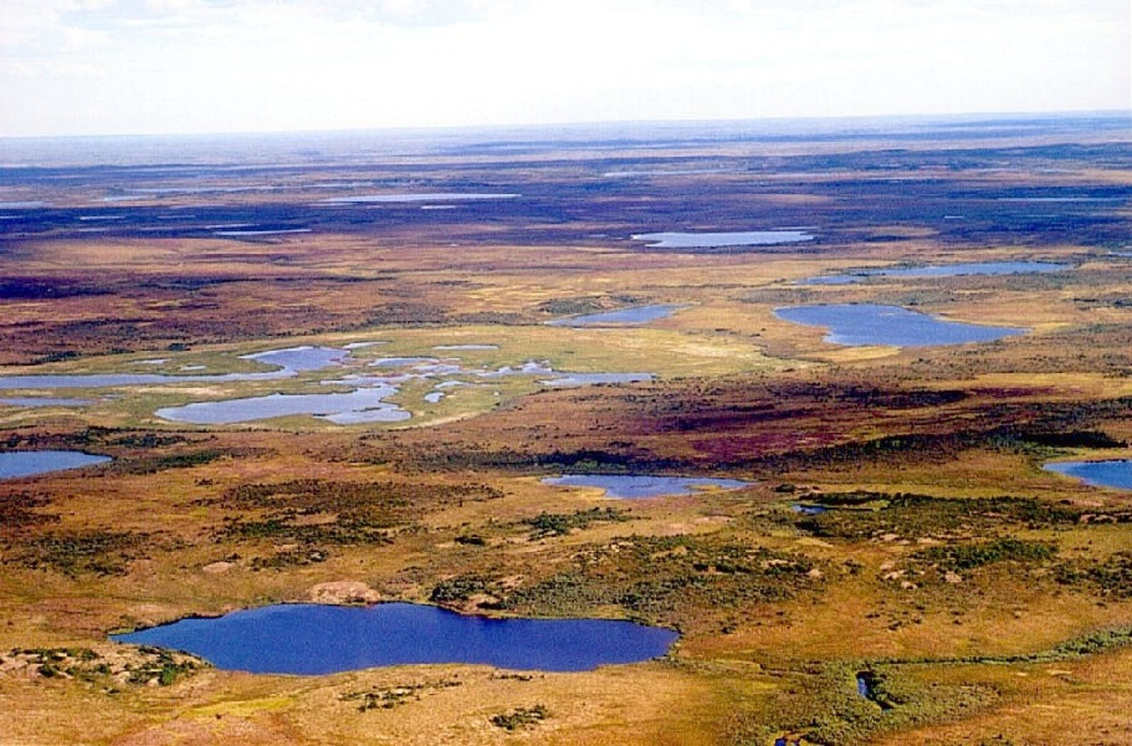 Yamal-Gydan Tundra