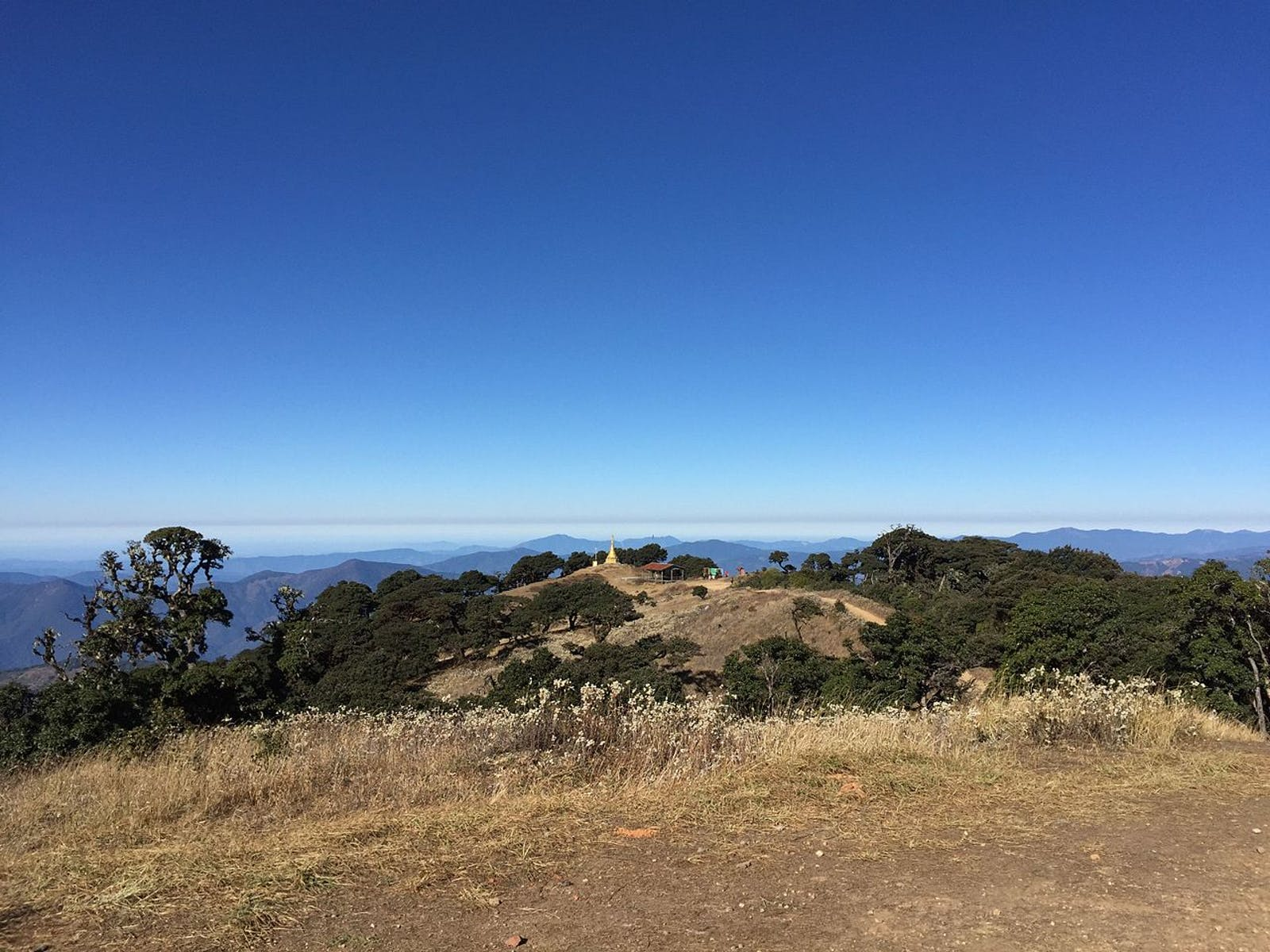 Chin Hills-Arakan Yoma Montane Forests