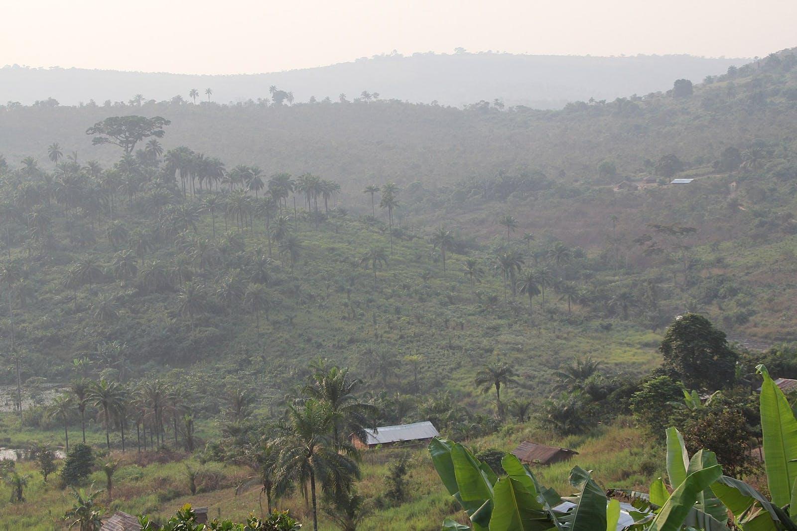 Southern Congolian Forest-Savanna