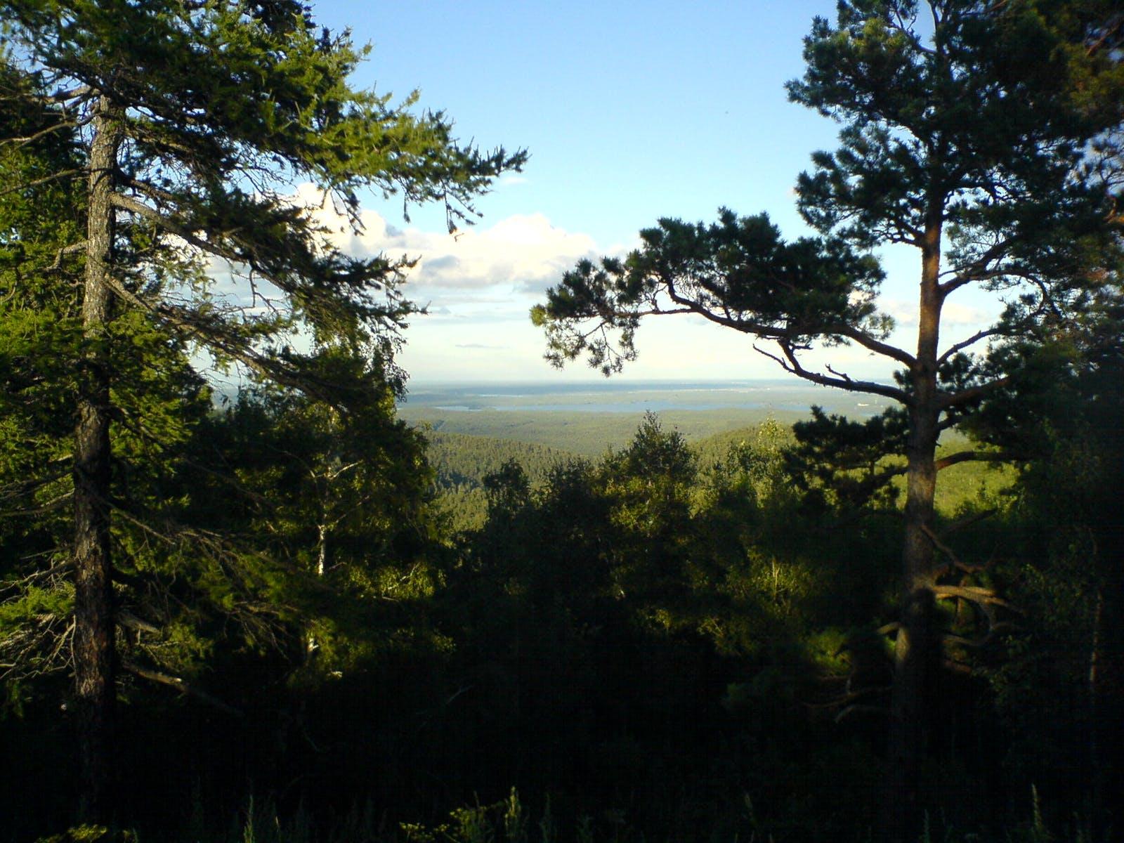 Kazakh Forest Steppe