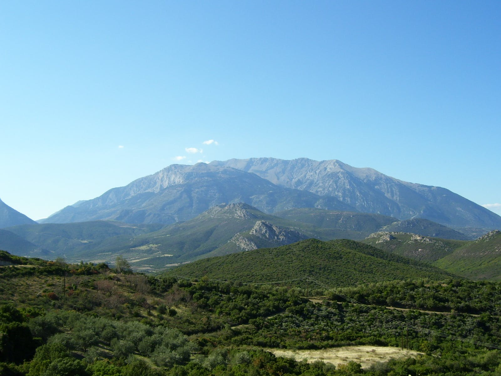 Pindus Mountains Mixed Forests