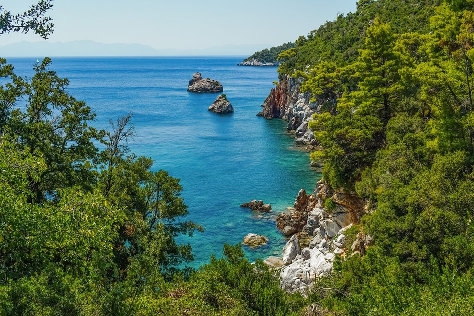 Aegean and Western Turkey Sclerophyllous and Mixed Forests