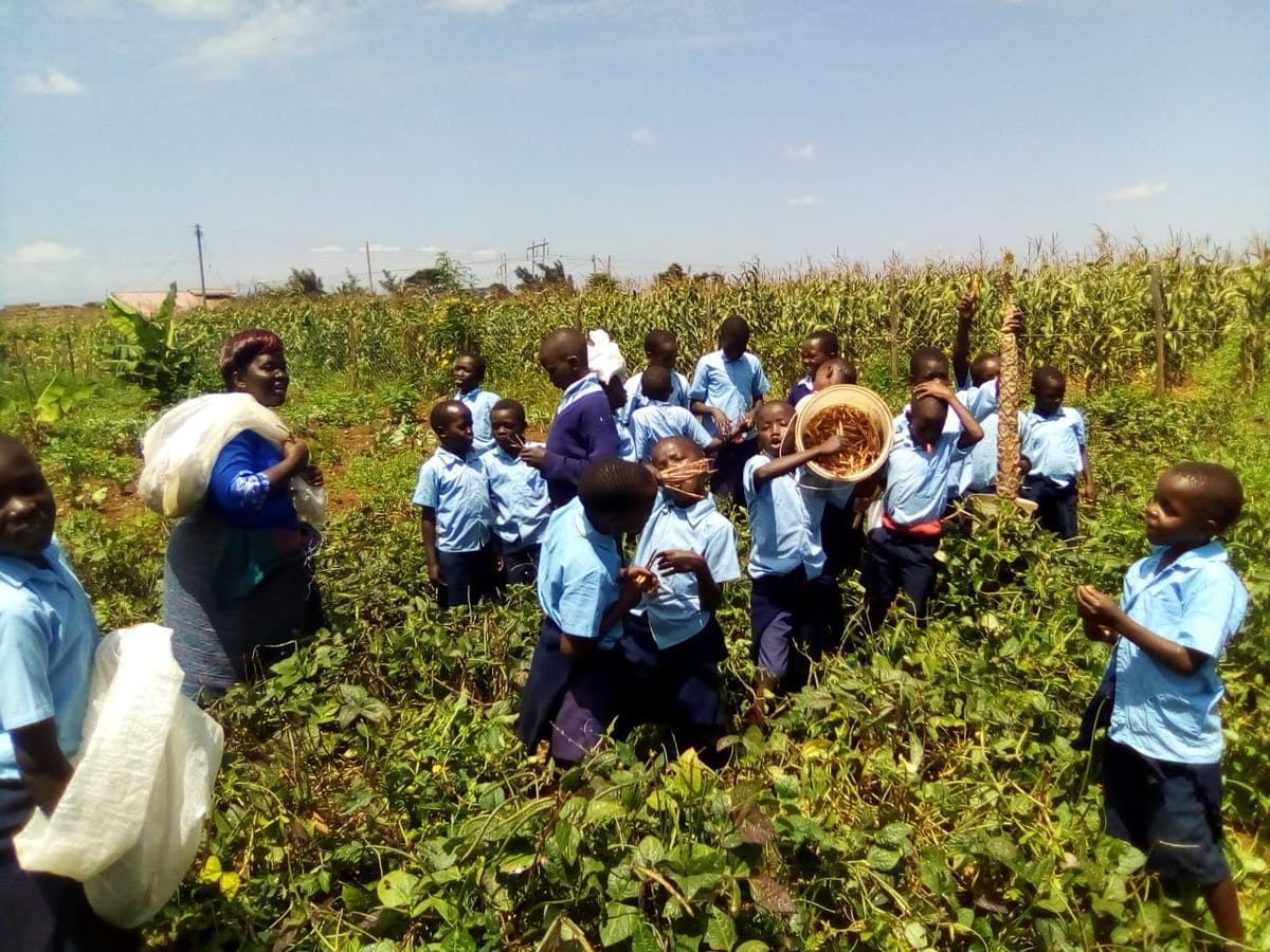Training a New Generation to Create Resilient Livelihoods Through Permaculture Farming