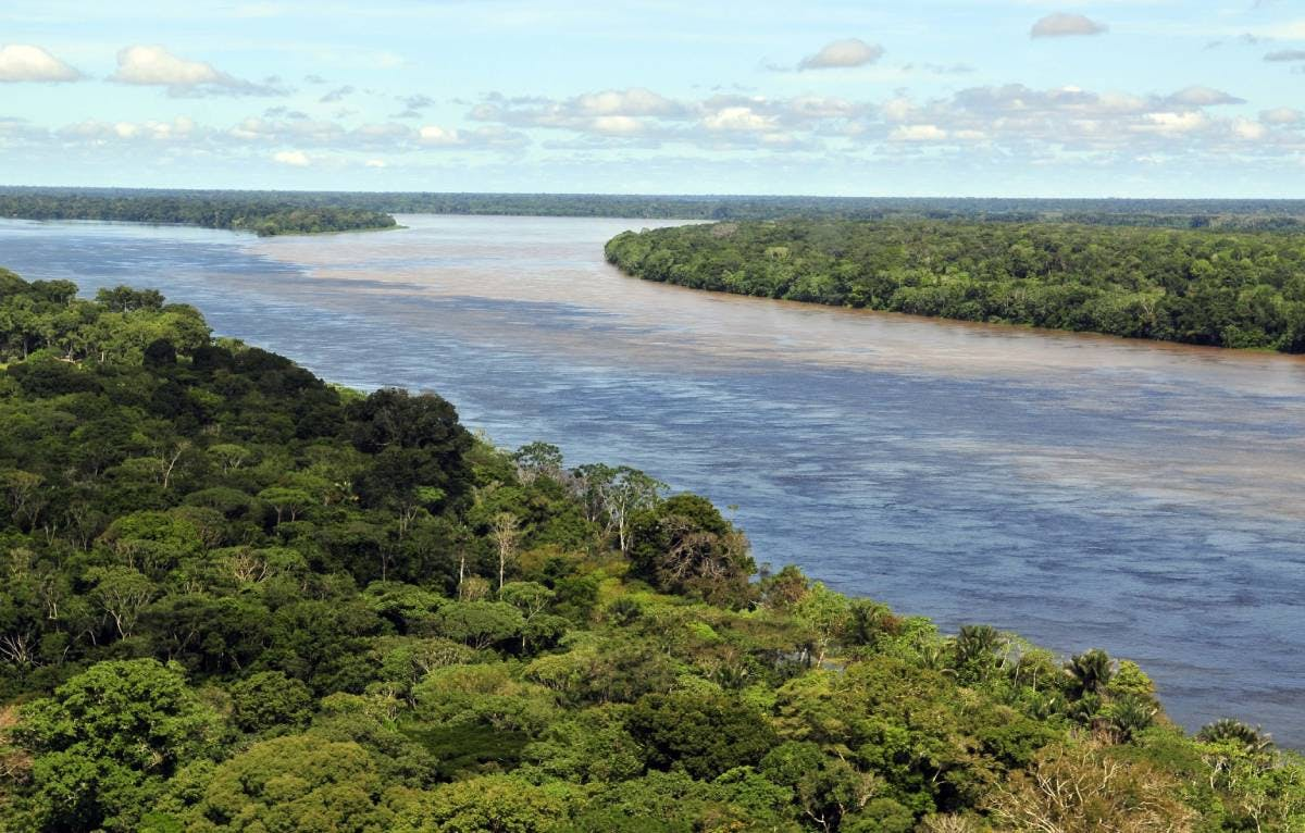 New campaign to protect 80% of the Amazonia by 2025