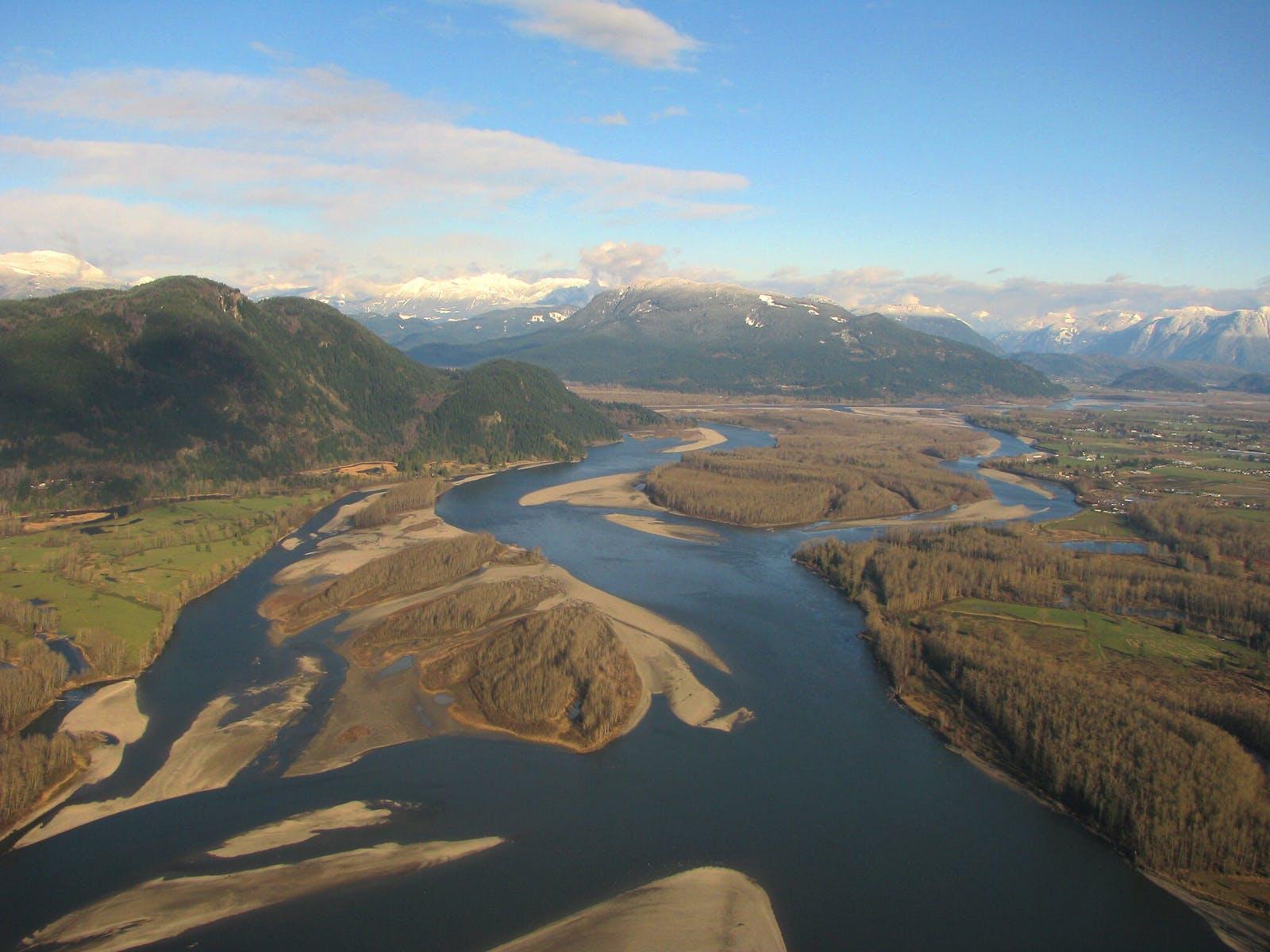 Fraser Plateau and Basin Conifer Forests