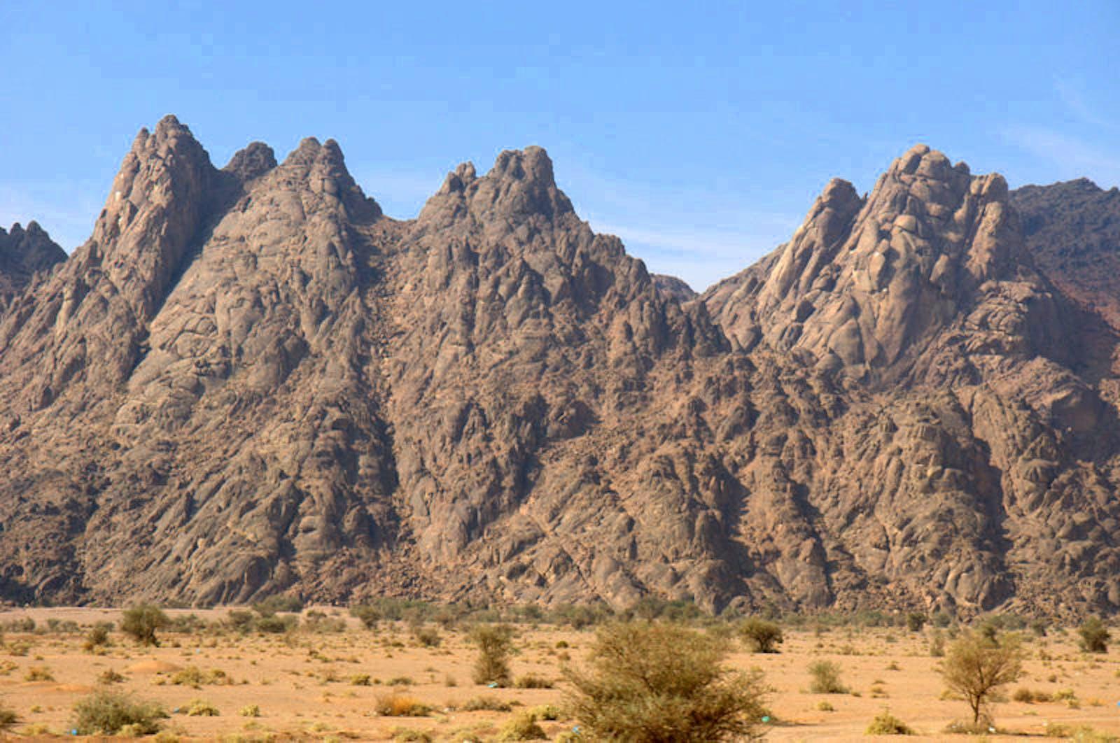 Red Sea-Arabian Desert Shrublands