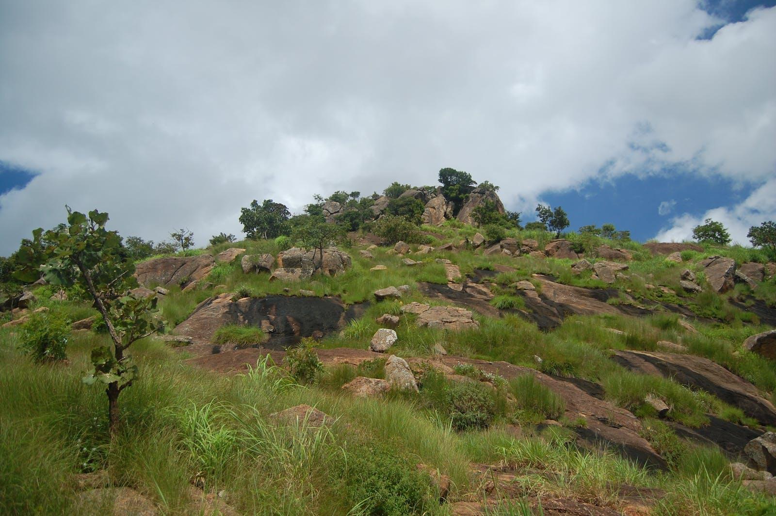 Jos Plateau Forest-Grassland