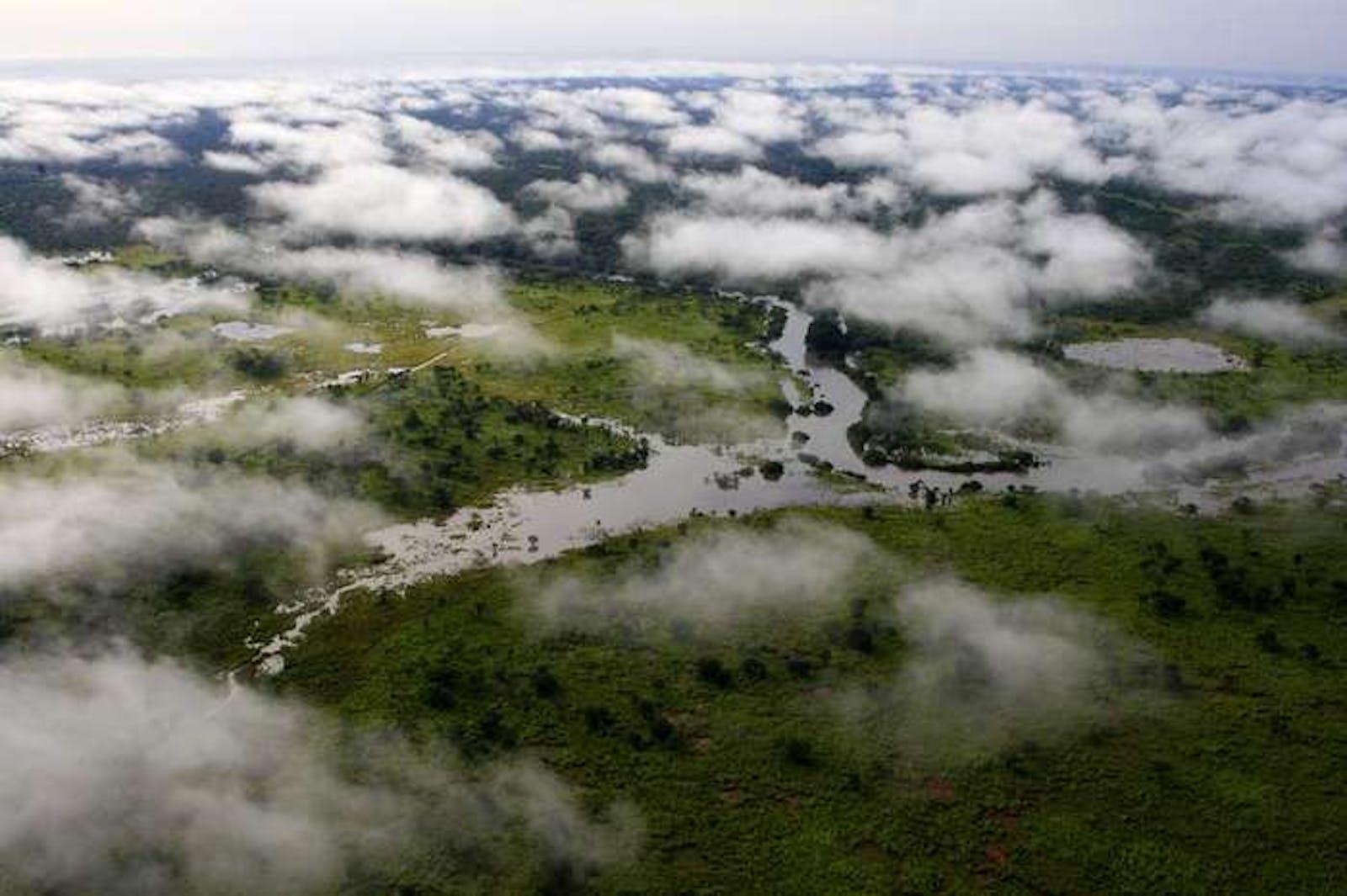 Northern Congolian Forest-Savanna