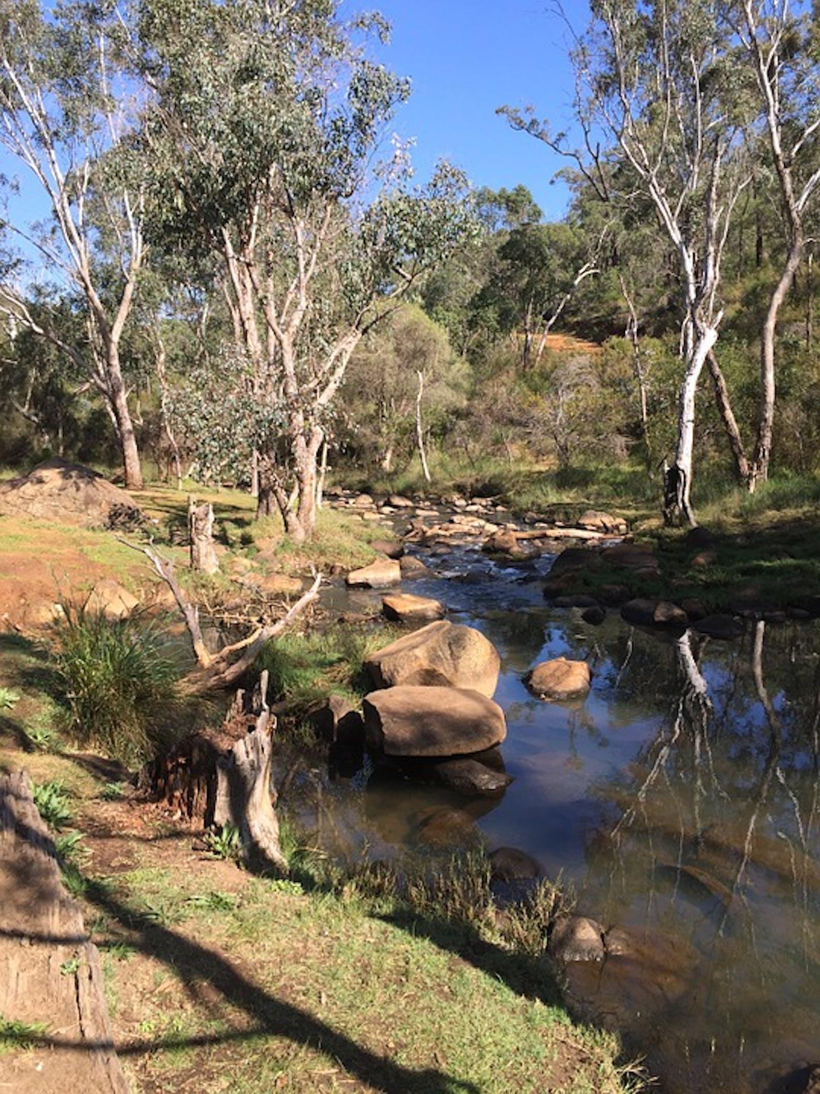 Southwest Australia Woodlands
