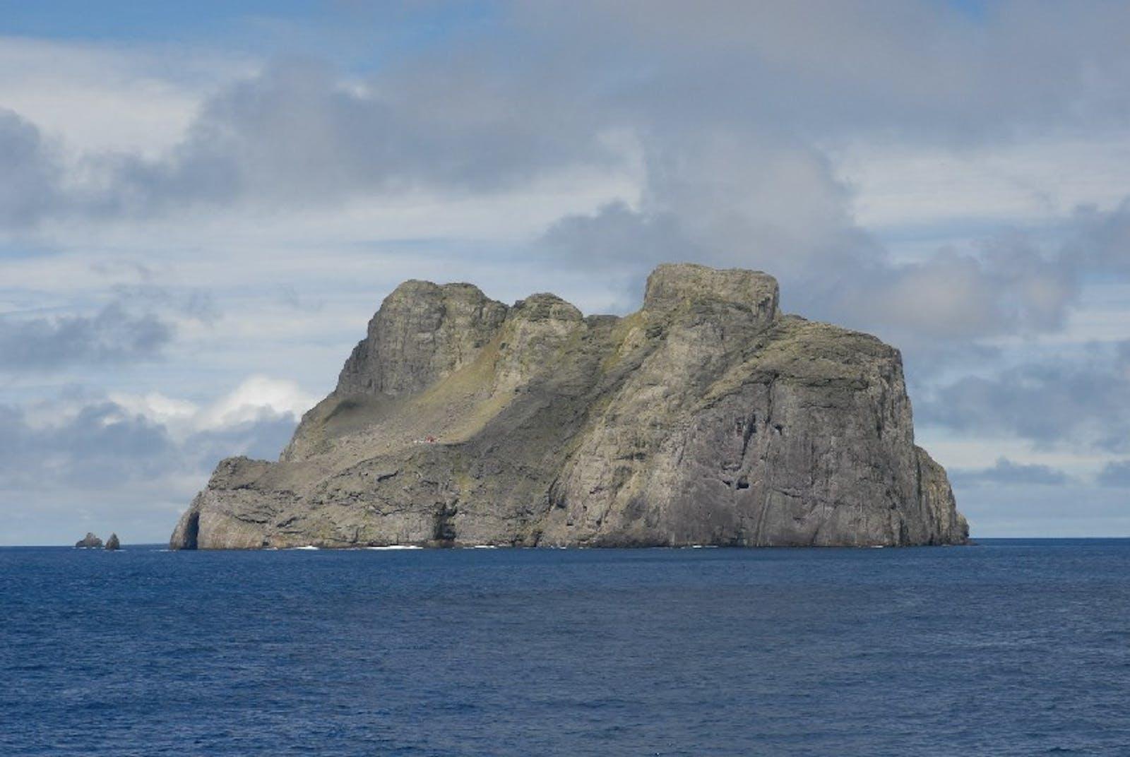 Malpelo Island Xeric Scrub