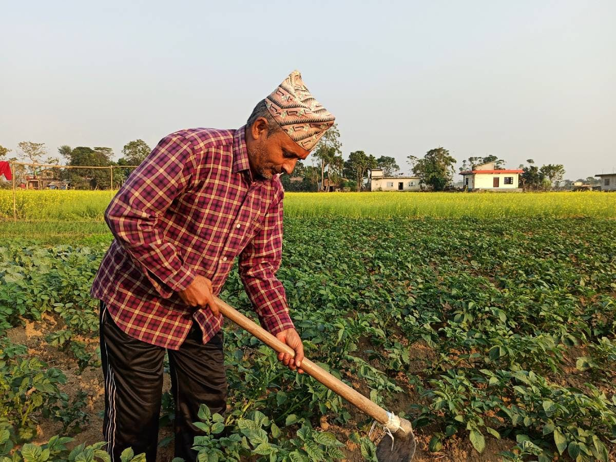Improving Crop Yields for Small Farmers in Nepal with Solar-powered Water Pumps