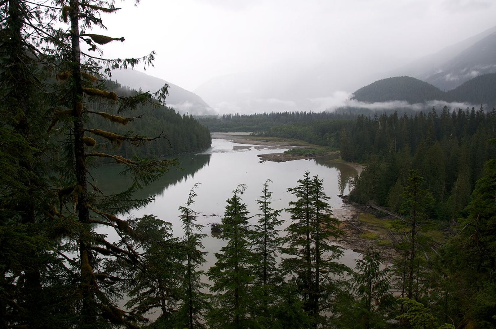 British Columbia Coastal Conifer Forests