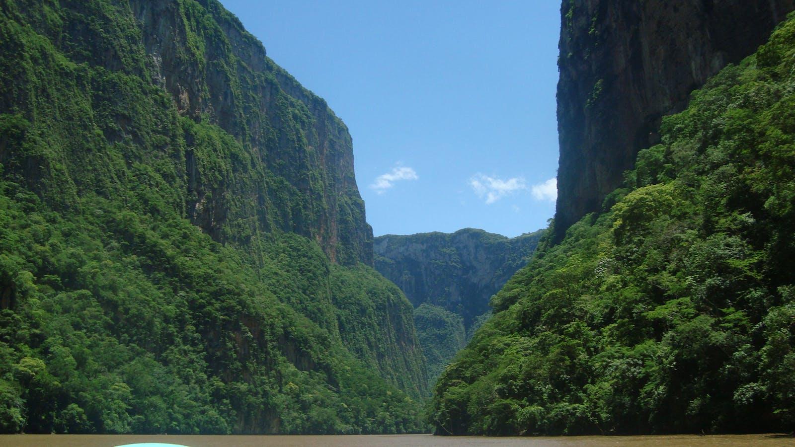 Chiapas Depression Dry Forests