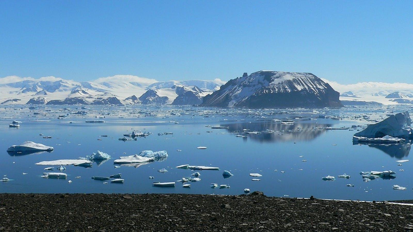 Northeast Antarctic Peninsula Tundra