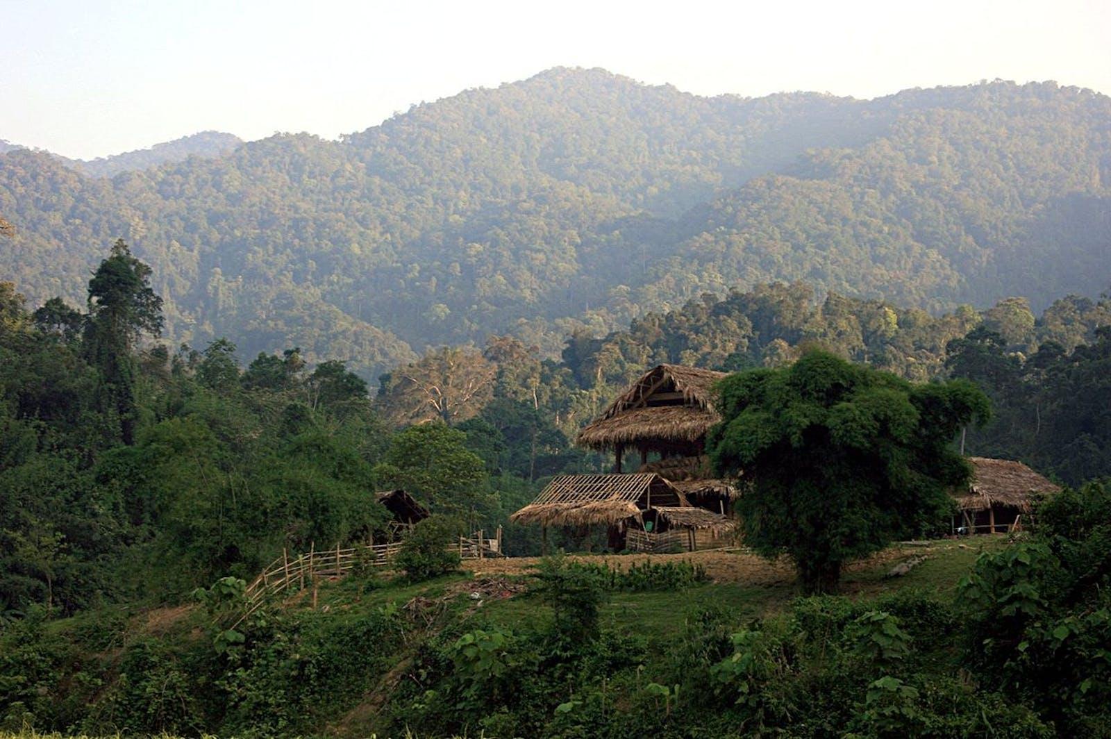 Northern Annamites Rainforests