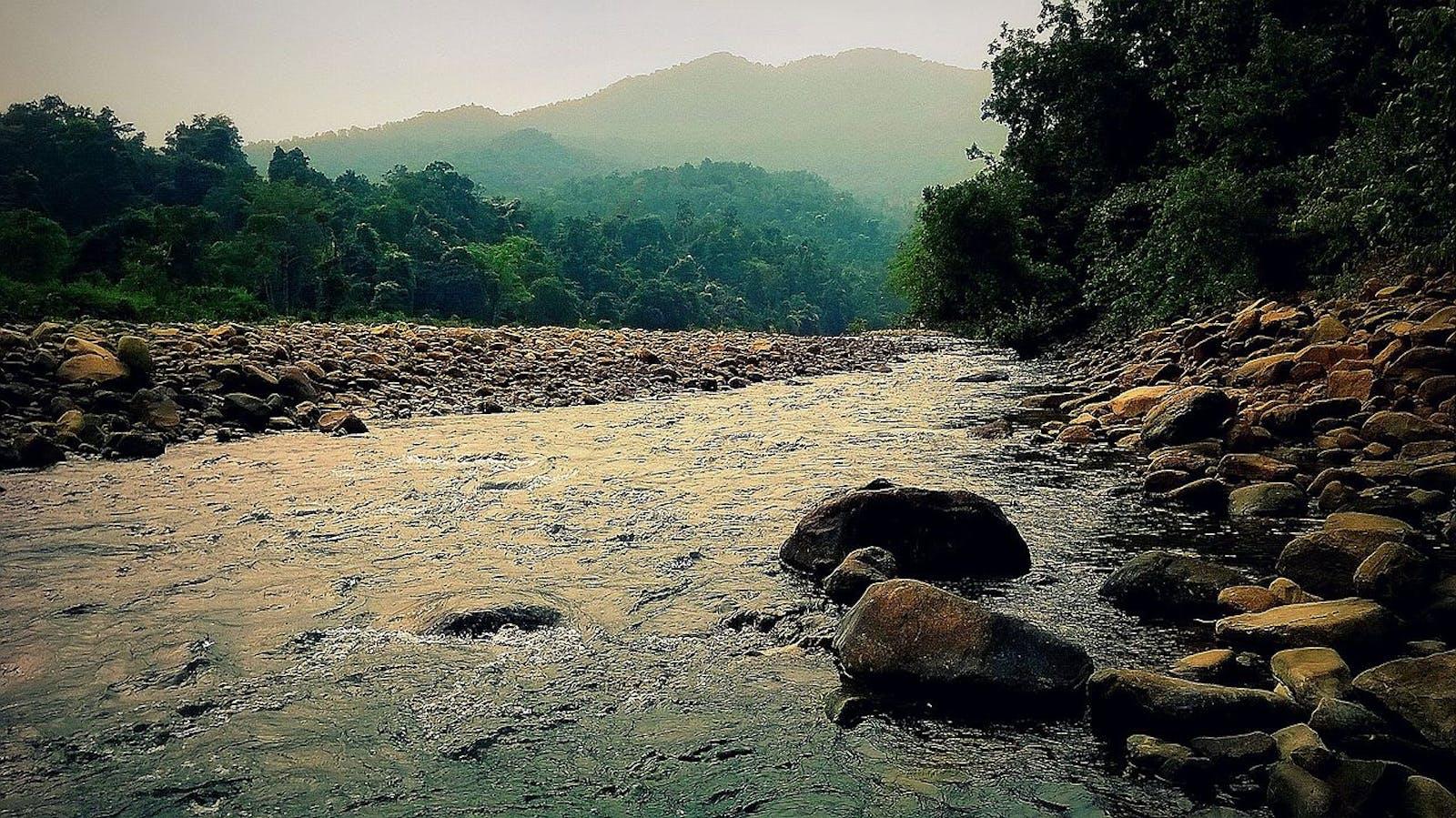 East Deccan Moist Deciduous Forests