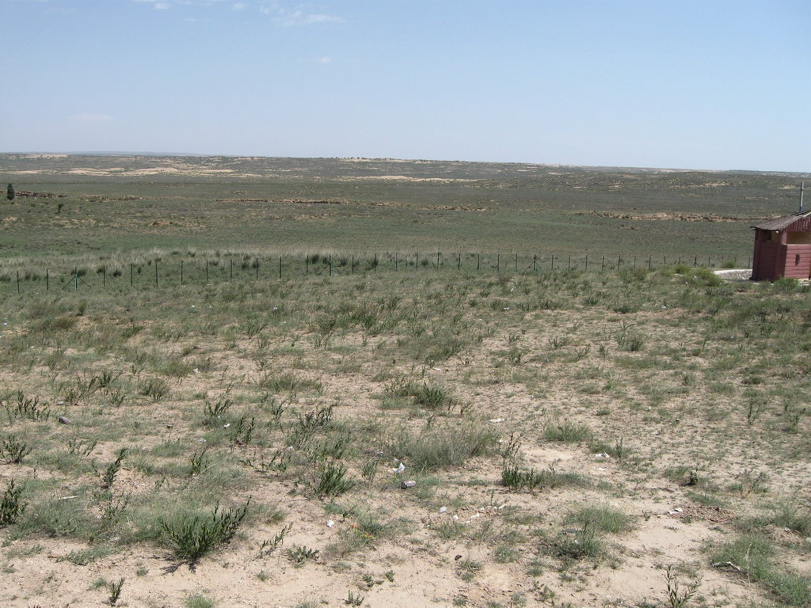 Ordos Plateau Steppe