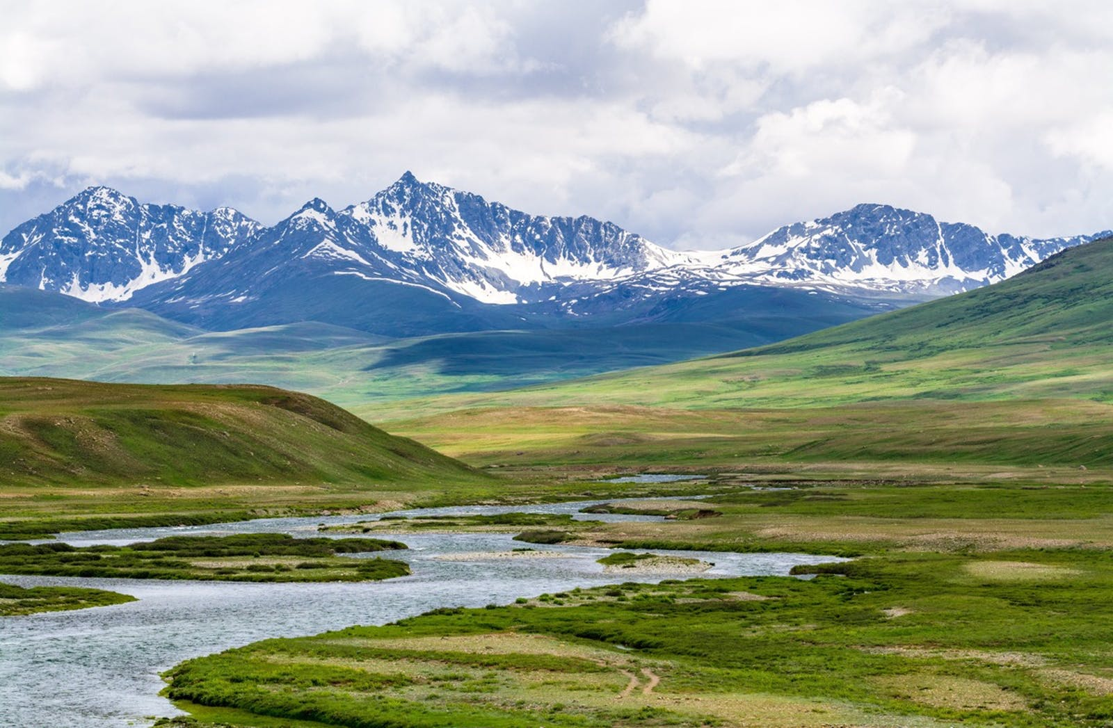 Karakoram-West Tibetan Plateau Alpine Steppe
