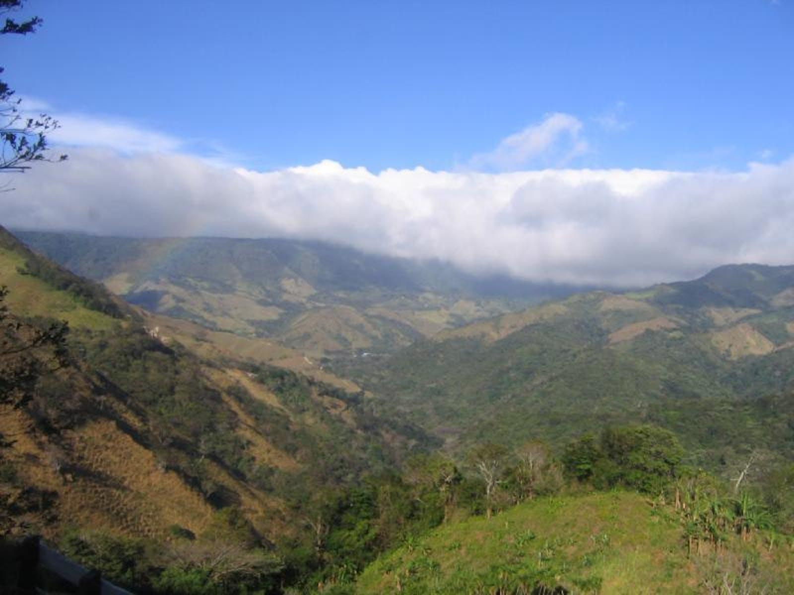Costa Rican Seasonal Moist Forests