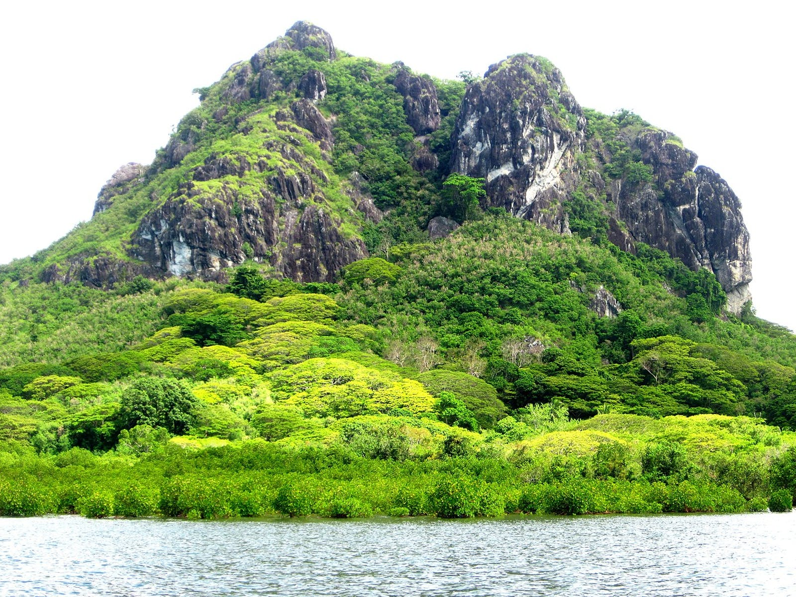 Fiji Tropical Moist Forests