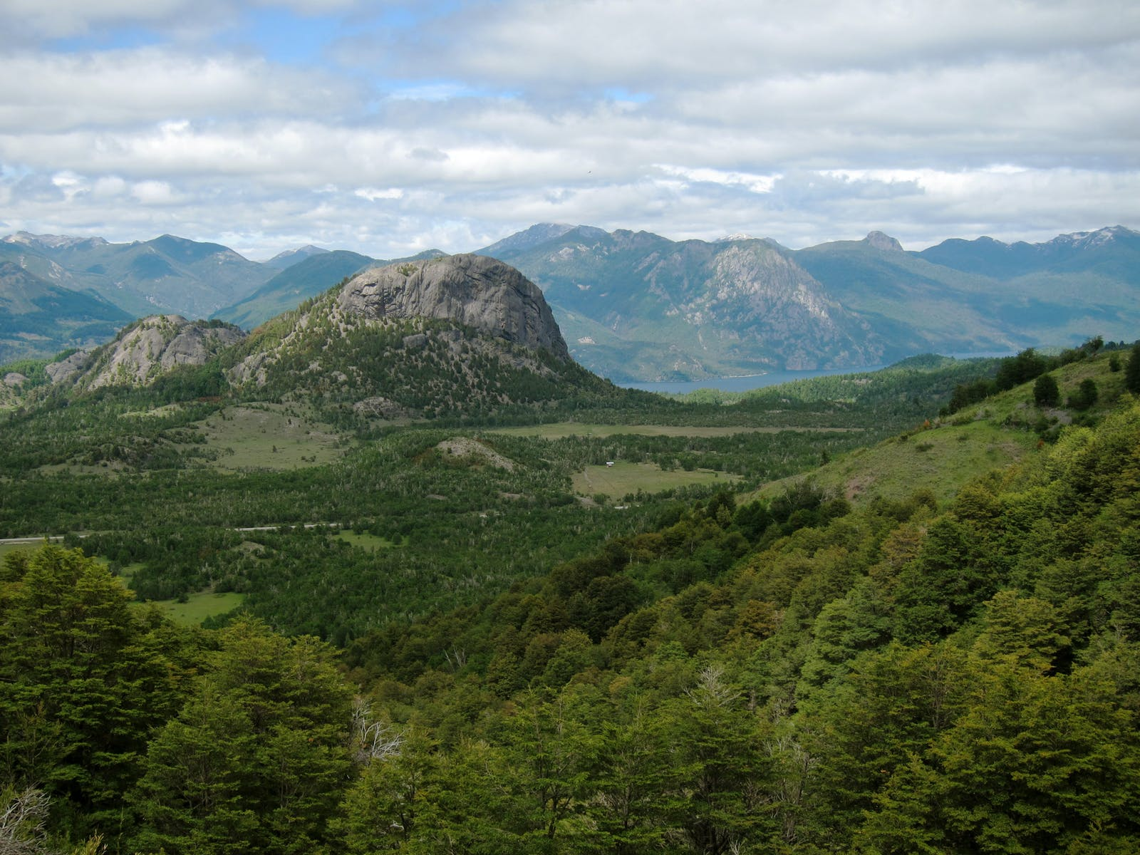 Valdivian Temperate Forests