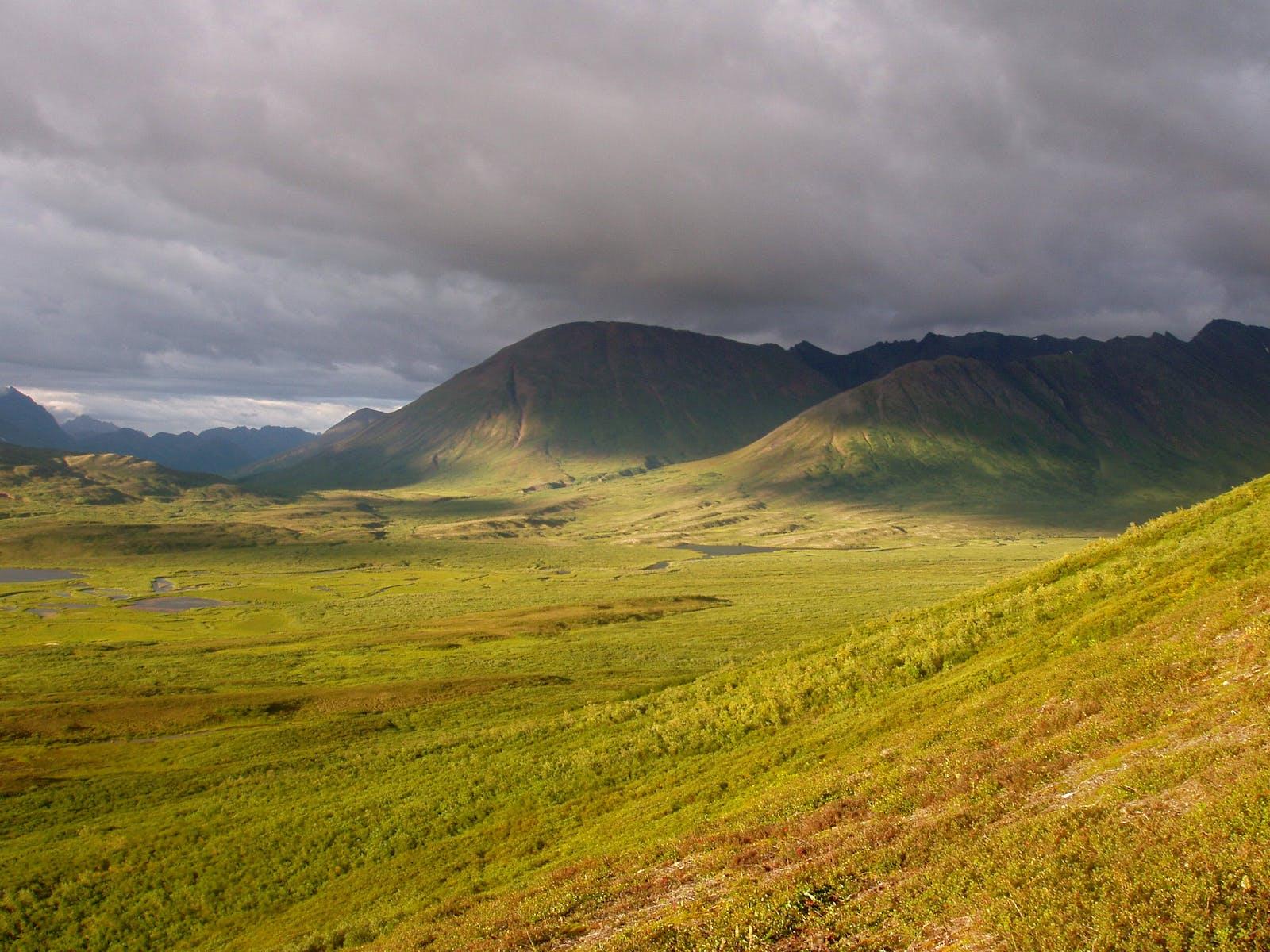 Ahklun and Kilbuck Upland Tundra