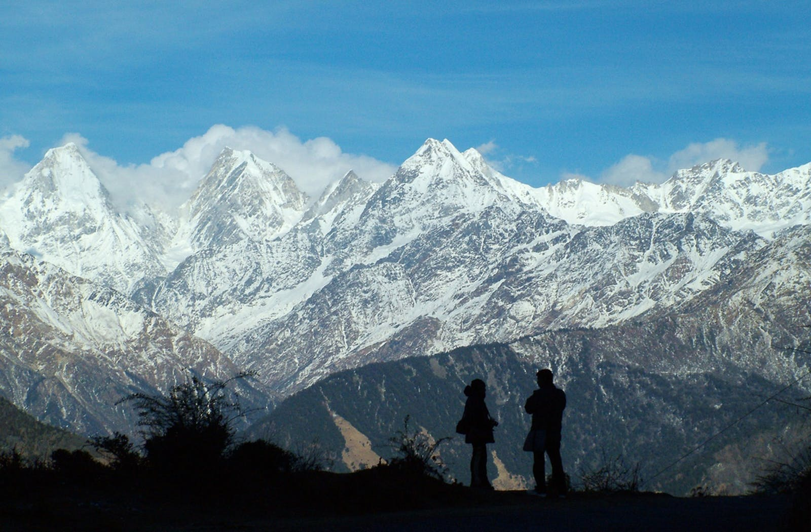 Western Himalayan Broadleaf Forests