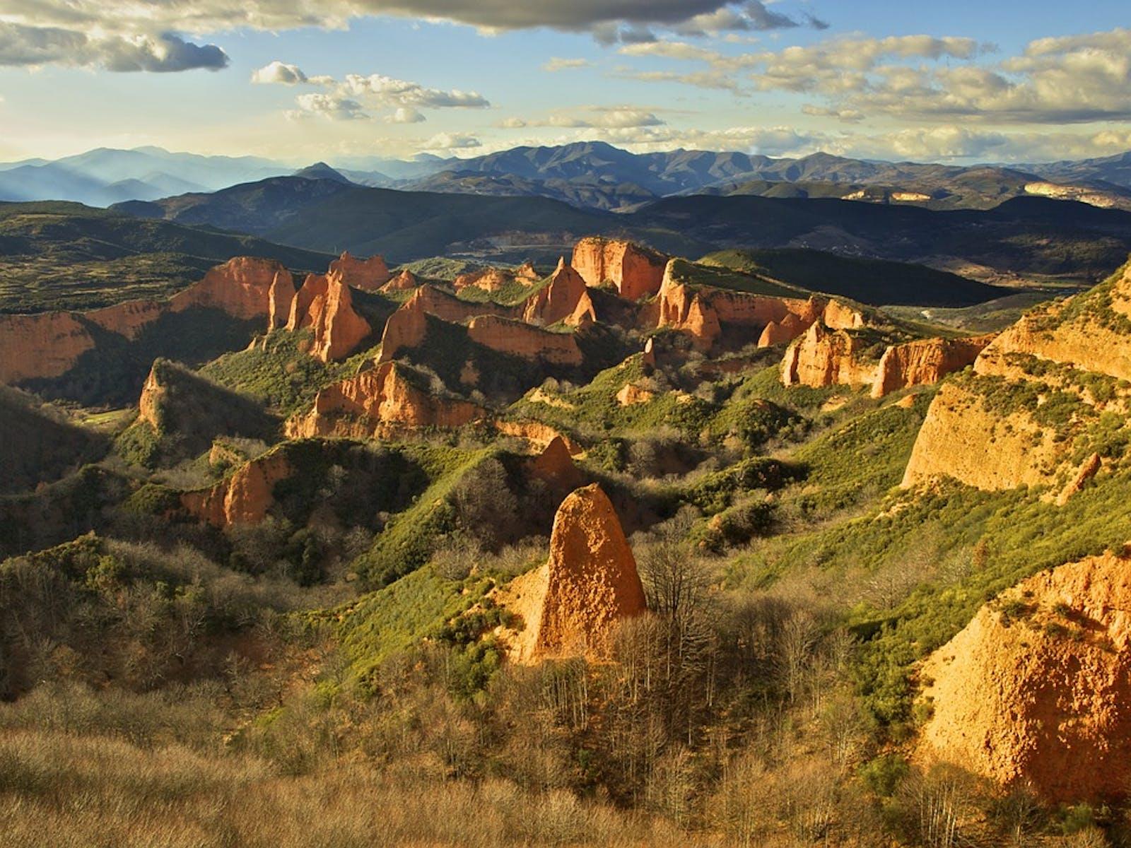 Northwest Iberian Montane Forests