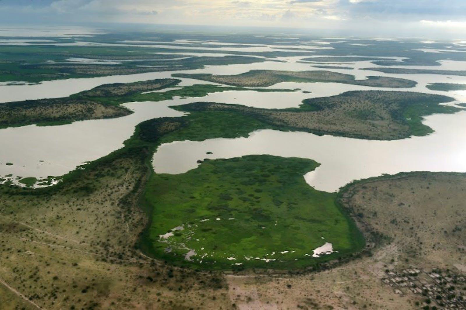 Lake Chad Flooded Savanna