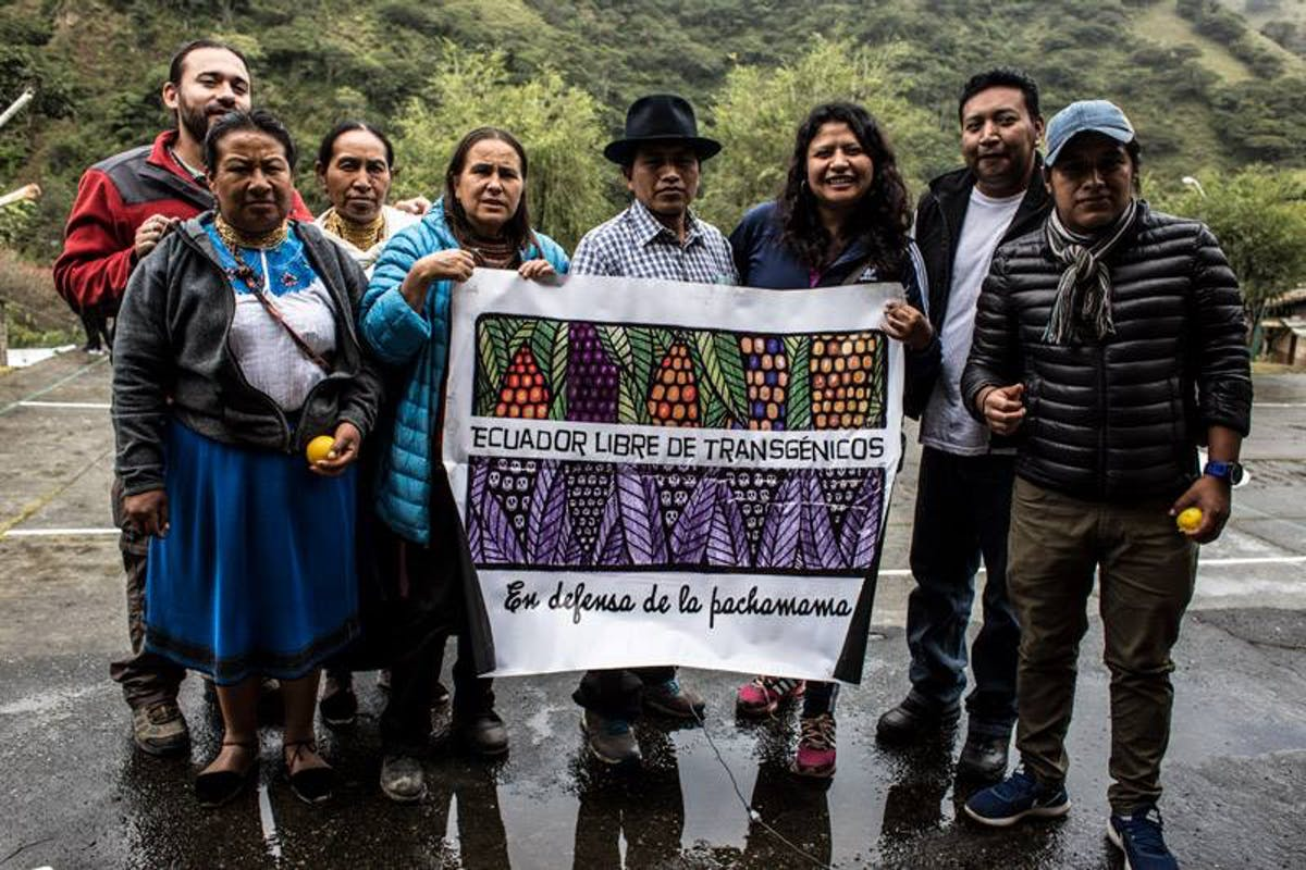 Promoting Heirloom Seeds and Traditional Andean Foods through the Agroecological Collective of Ecuador