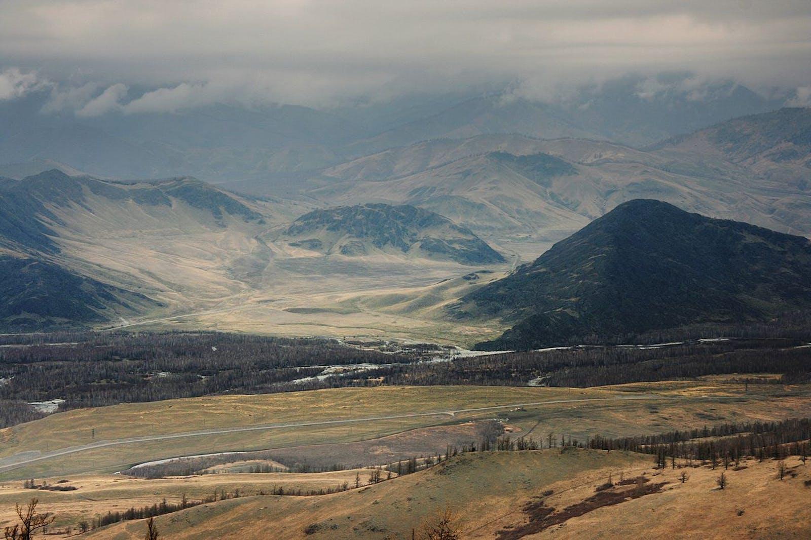 Altai Steppe and Semi-Desert