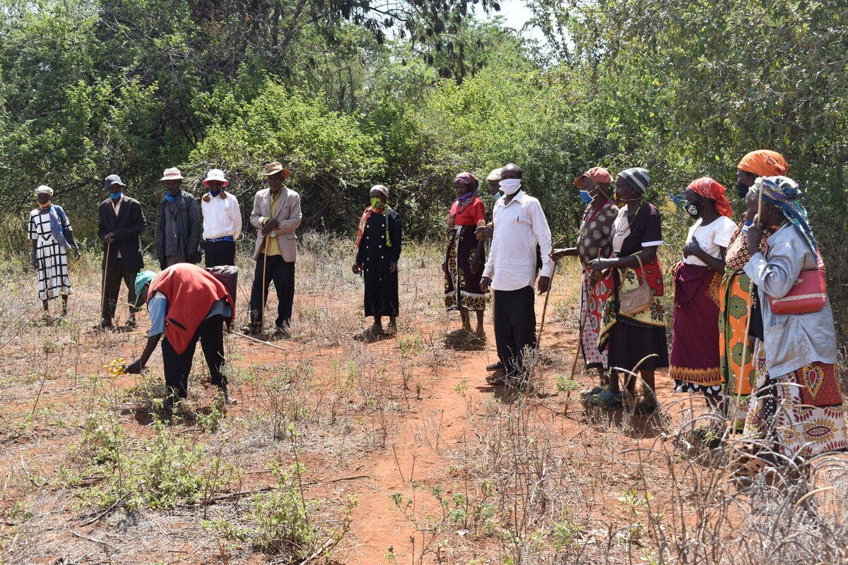 Reviving Indigenous Farming Practices to Support Traditional Communities in Ethiopia