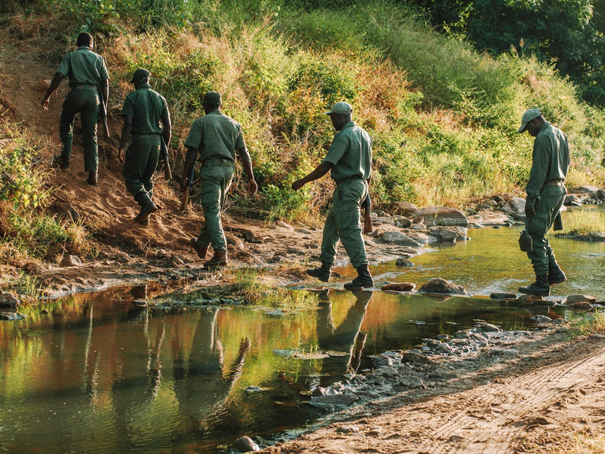Supporting Solar-powered Conservation of the Zambezi Valley in Zimbabwe