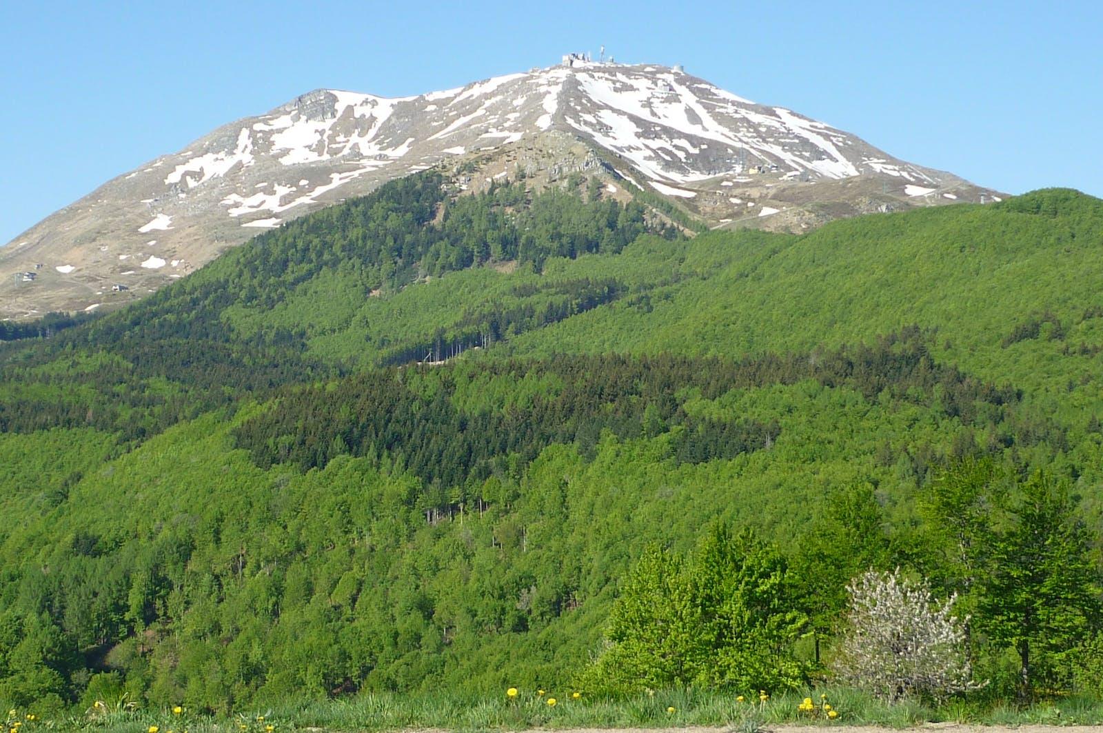 Appenine Deciduous Montane Forests