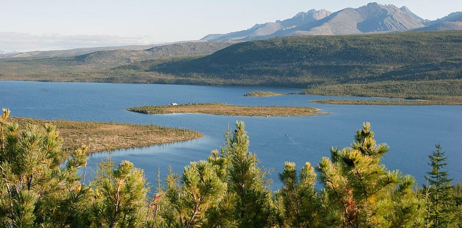 Northeast Siberian Taiga