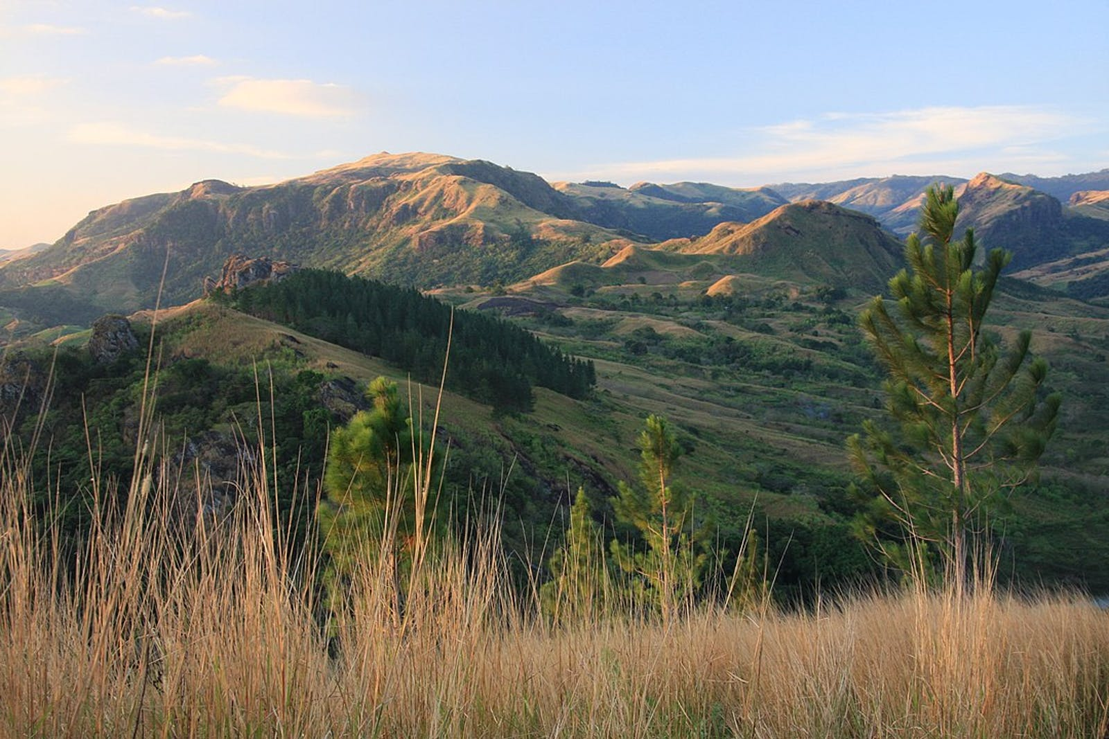 Fiji Tropical Dry Forests