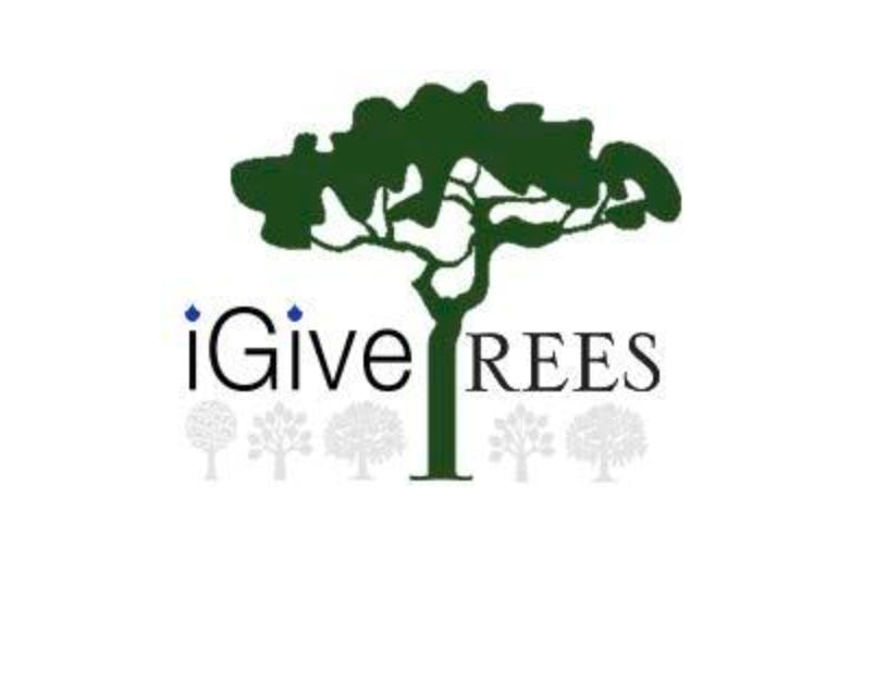I Give Trees