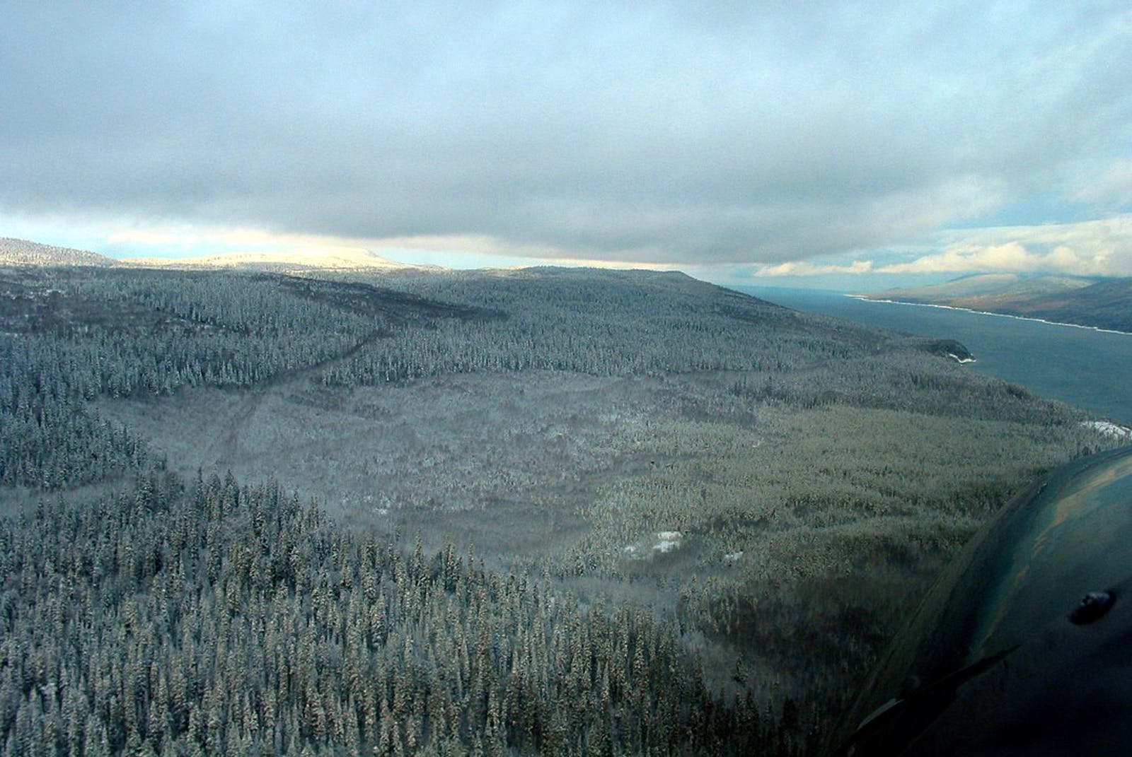 Central British Columbia Mountain Forests
