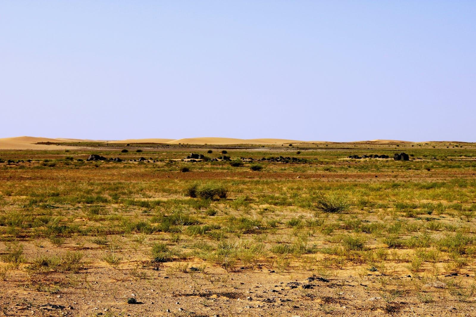 South Sahara Desert