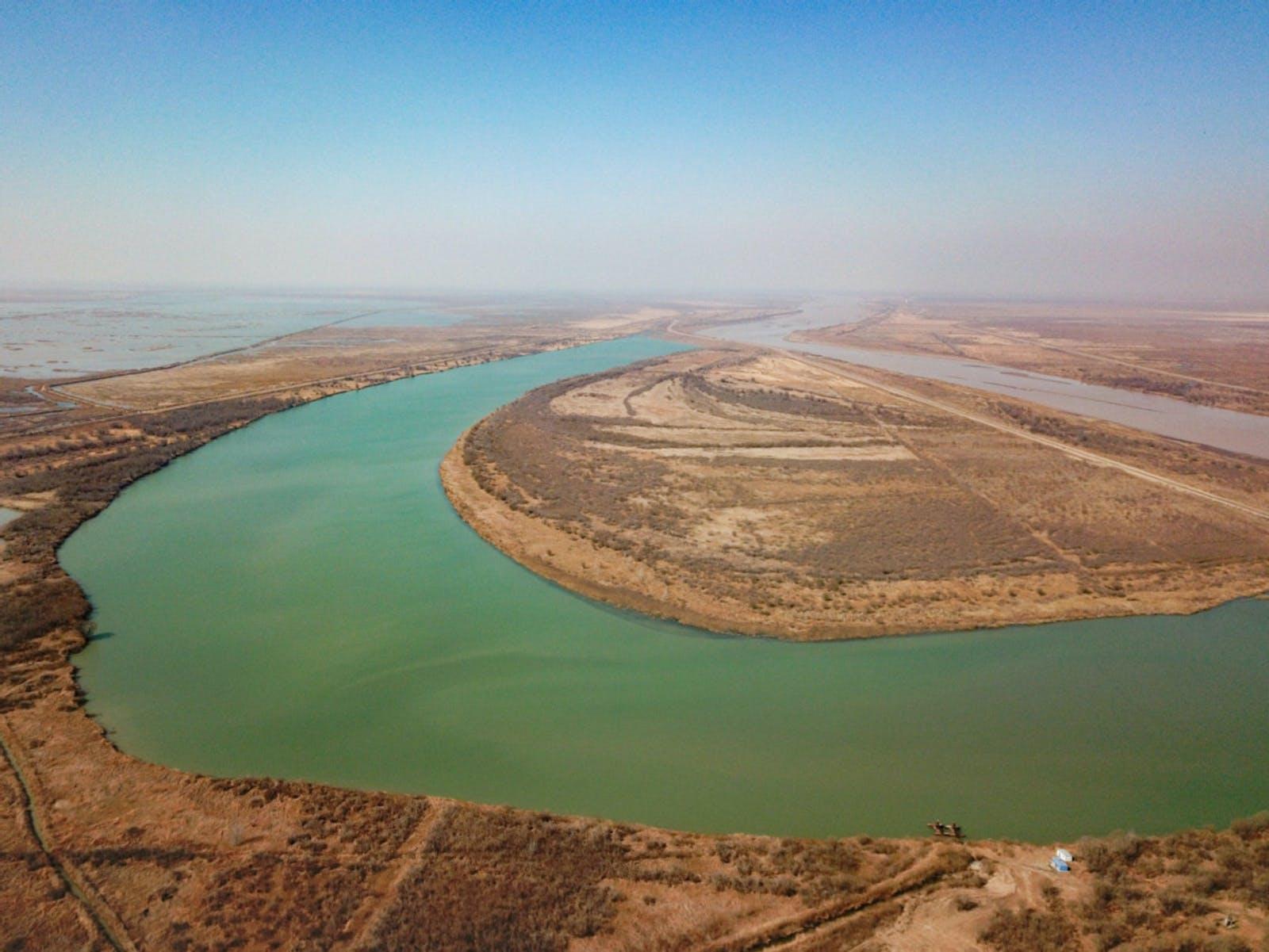 Bohai Sea Saline Meadow