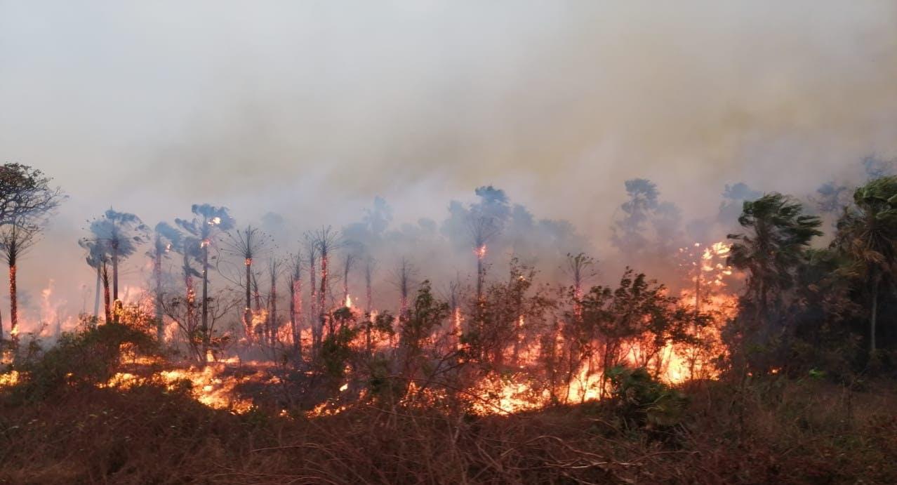 Fuego en el área natural de manejo integrado Otuquis