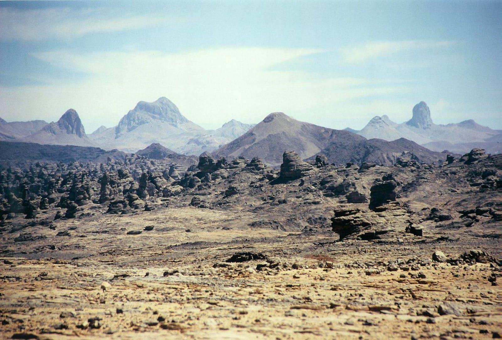 Tibesti-Jebel Uweinat Montane Xeric Woodlands