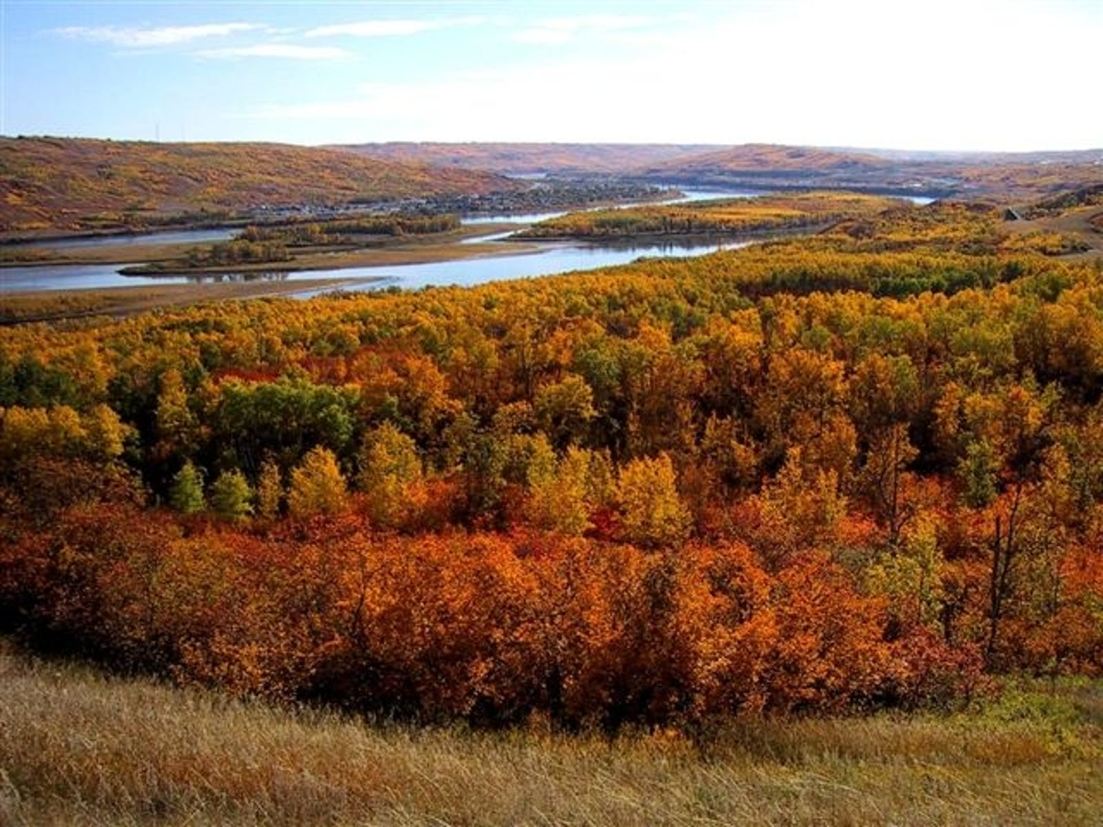 Mid-Canada Boreal Plains Forests