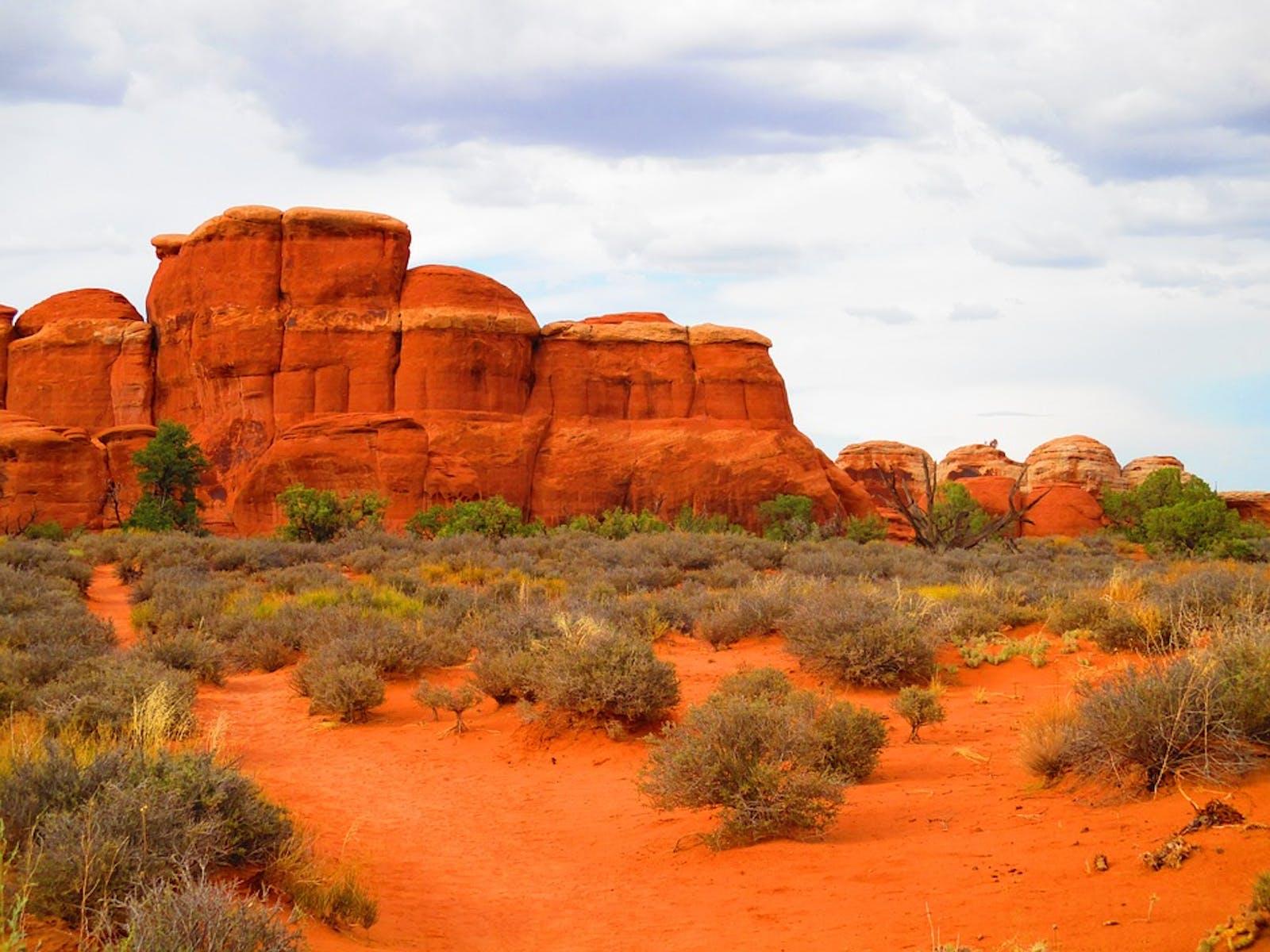 Colorado Plateau Shrublands