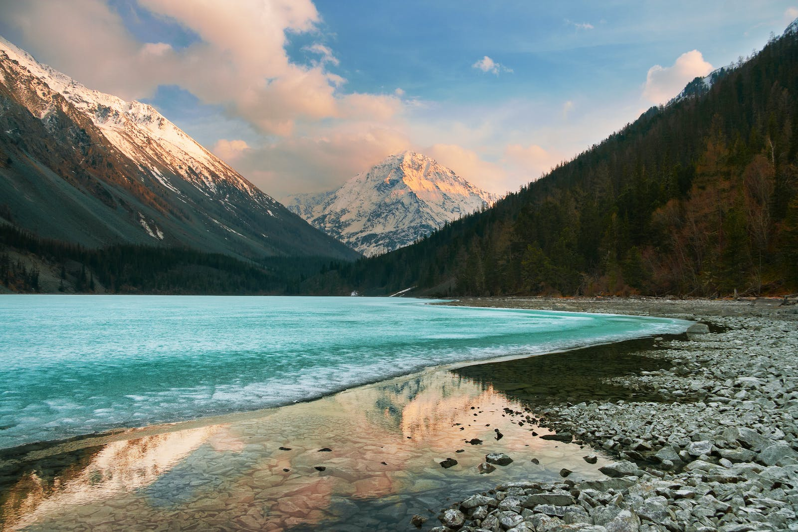 Altai Montane Forest and Forest Steppe
